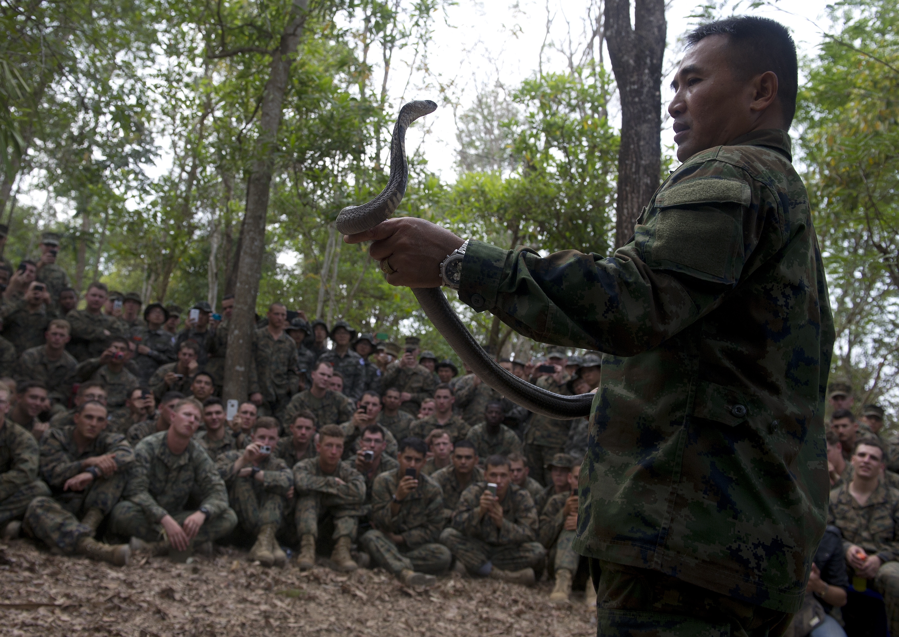 A Thai Marine shows how to catch a cobra as U.S. Marines look on during a jungle-survival program at a navy base in Chanthaburi province, Thailand, on Feb. 15, 2014