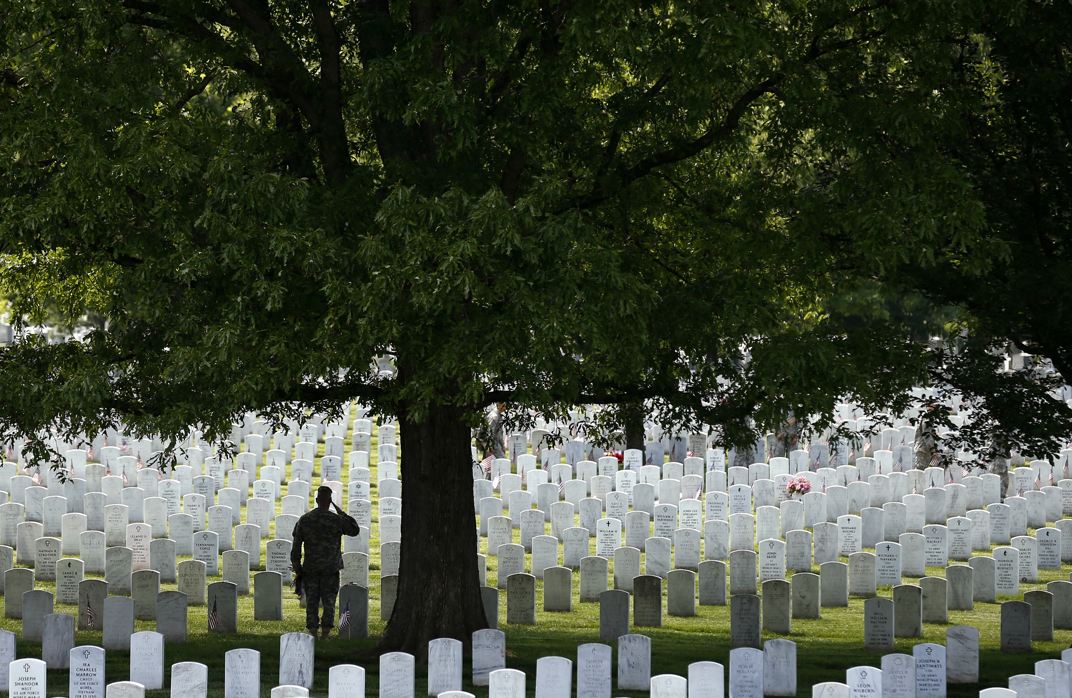 A member of the 3rd U.S. Infantry Regiment,  The Old Guard  salutes in front of a grave during a  Flags-In  ceremony at Arlington National Cemetery in Va., May 22, 2014.