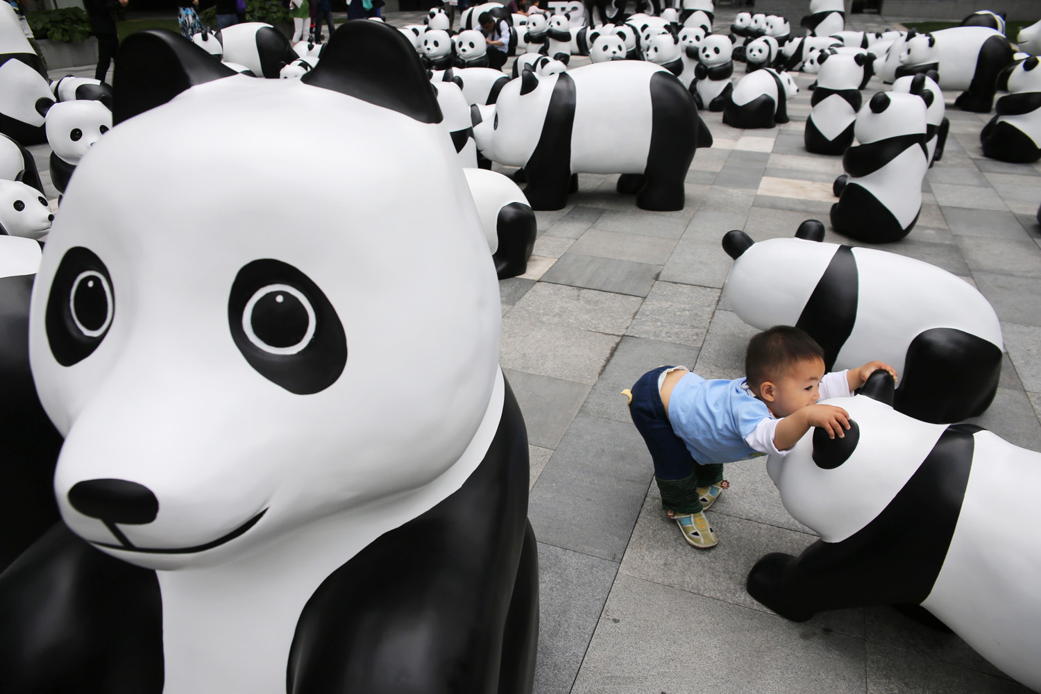 A child plays among panda sculptures at an installation in Shanghai on June 3, 2014.