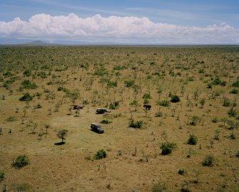 DC 081.55 001 elephant, ol pejeta conservancy, northern kenya-fr