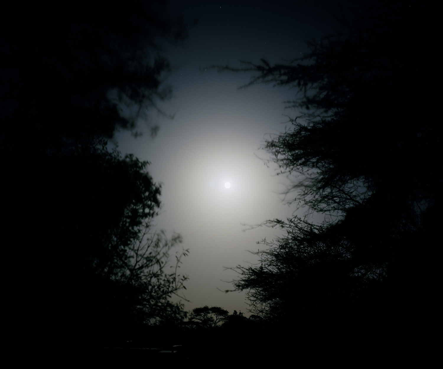 Poaching increases significantly during periods of full moon, also referred to as the  hunters moon  at Mpus Kutuk Community Conservancy, northern Kenya.