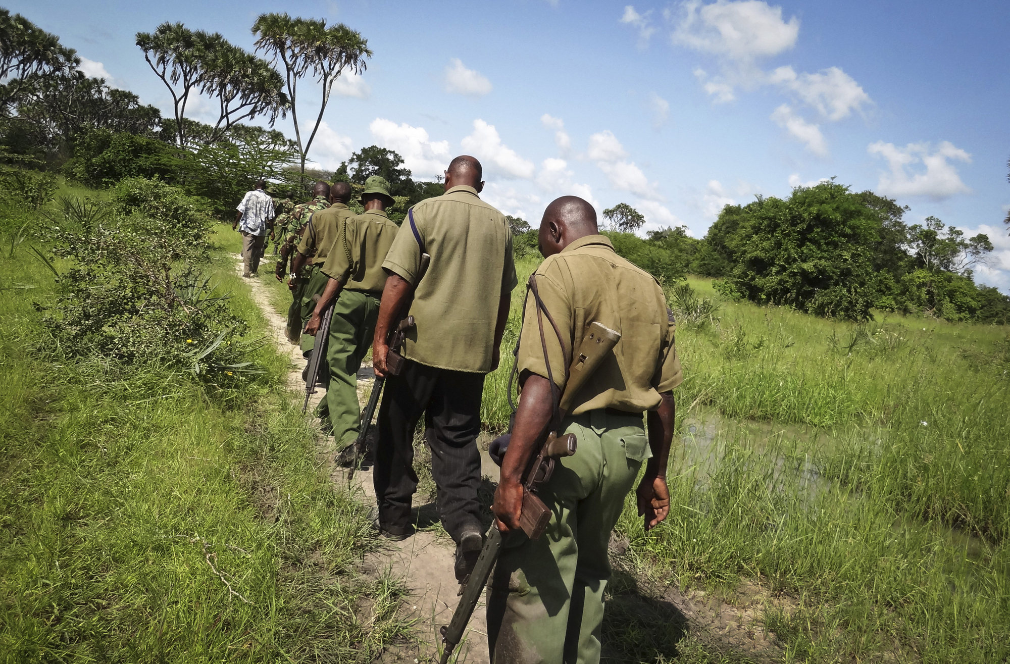 Armed members of the Kenyan security forces march in single file along narrow paths leading through the dense swamp and forest, searching for the attackers, in the remote village of Kaisari, near Mpeketoni, about 60 miles from the Somali border on the coast of Kenya, June 17, 2014.
