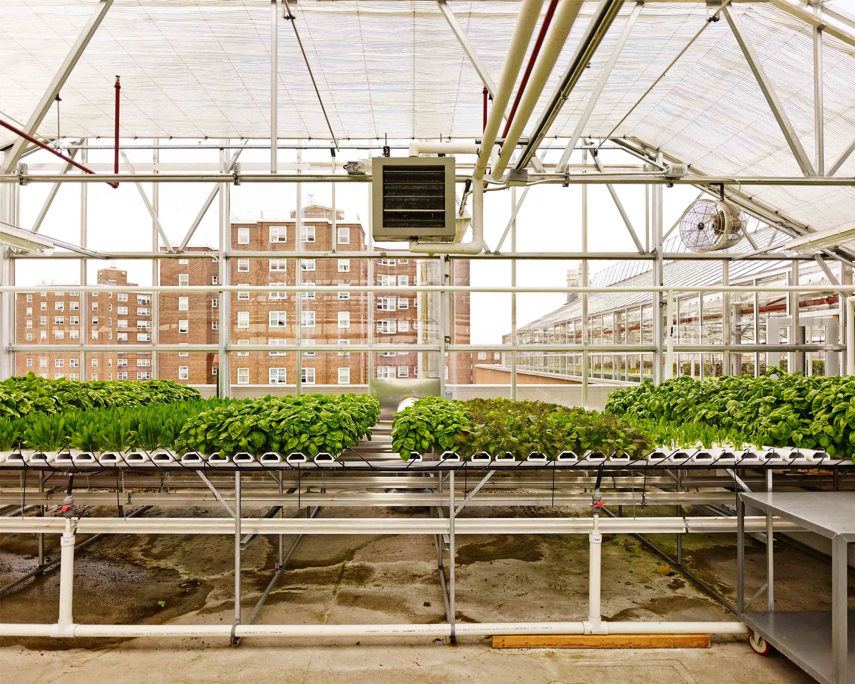 To help improve eating habits, Arbor House offers its roof rent-free to Sky Vegetables, an urban-agriculture company that sells or donates 40% of its produce to nearby shops and farmers' markets.