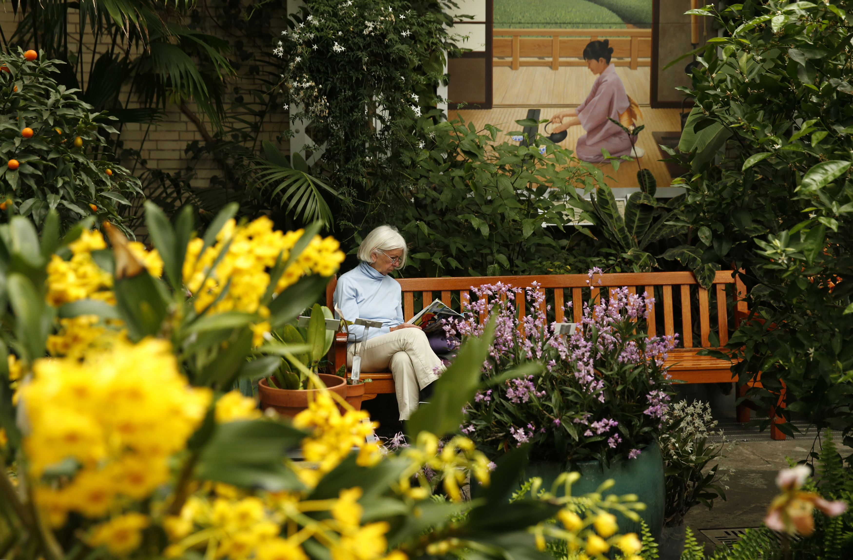 A woman reads a magazine while enjoying classical music at the exhibit  Orchid Symphony  in the conservatory of the United States Botanic Garden in Washington, D.C., on March 12, 2014.