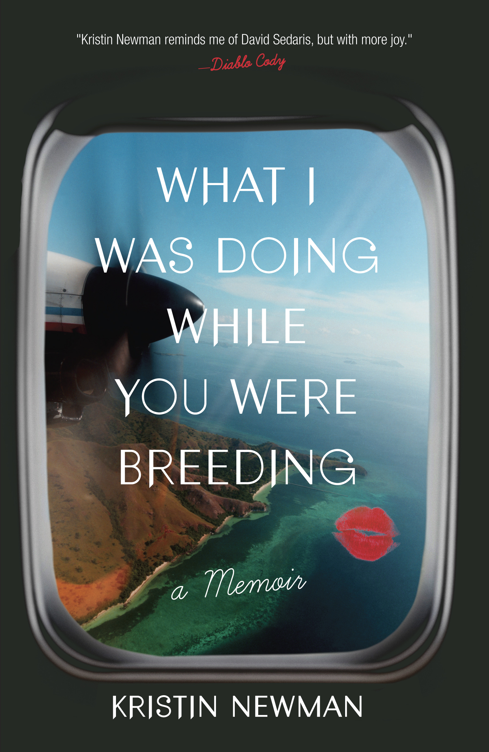 What I Was Doing While You Were Breeding, by Kristin Newman