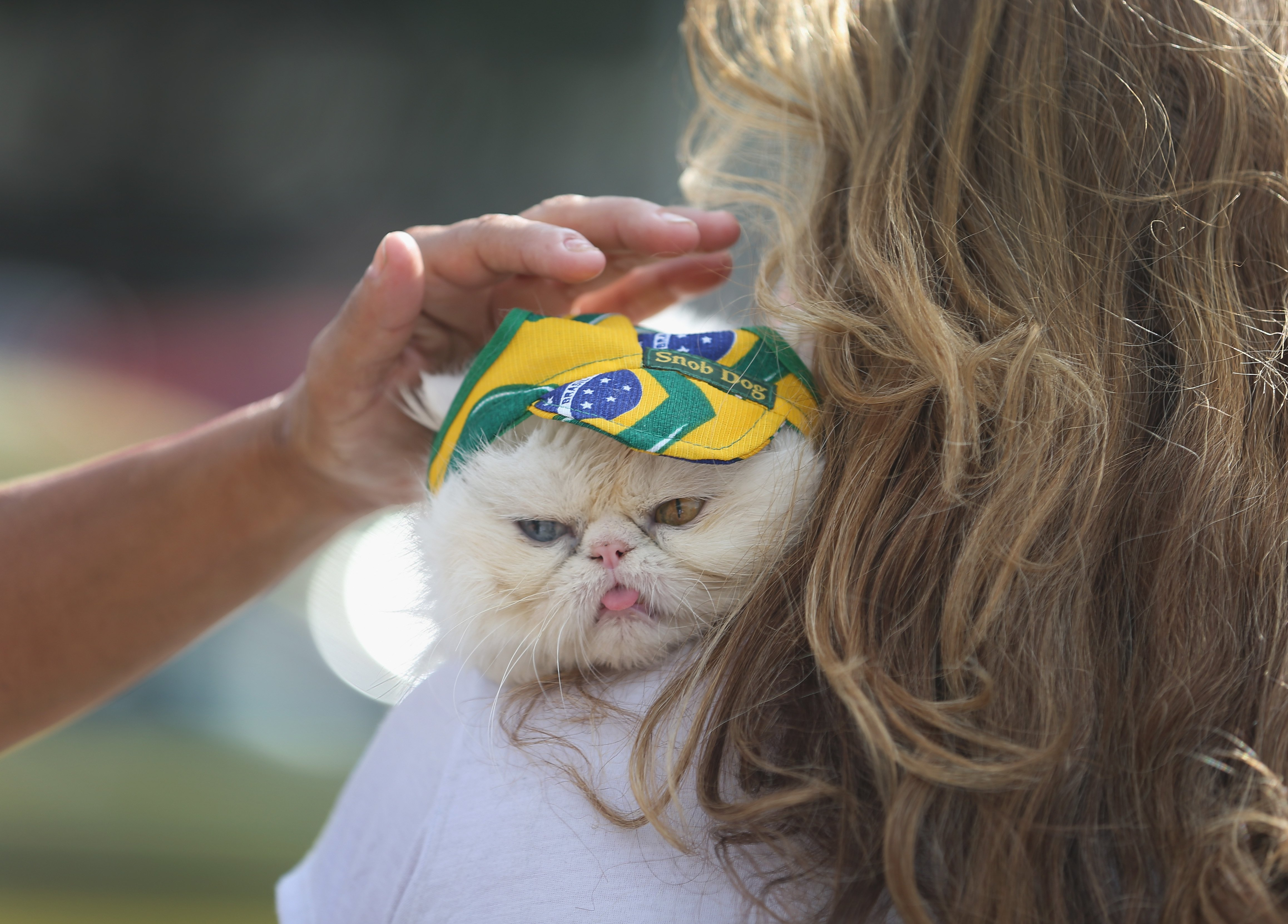 Leila de Matos holds her cat, Yandu, as it wears a Brazlian flag hat as they visit Copacabana beach while waiting for the start of the World Cup tournament on June 11, 2014 in Rio de Janeiro.