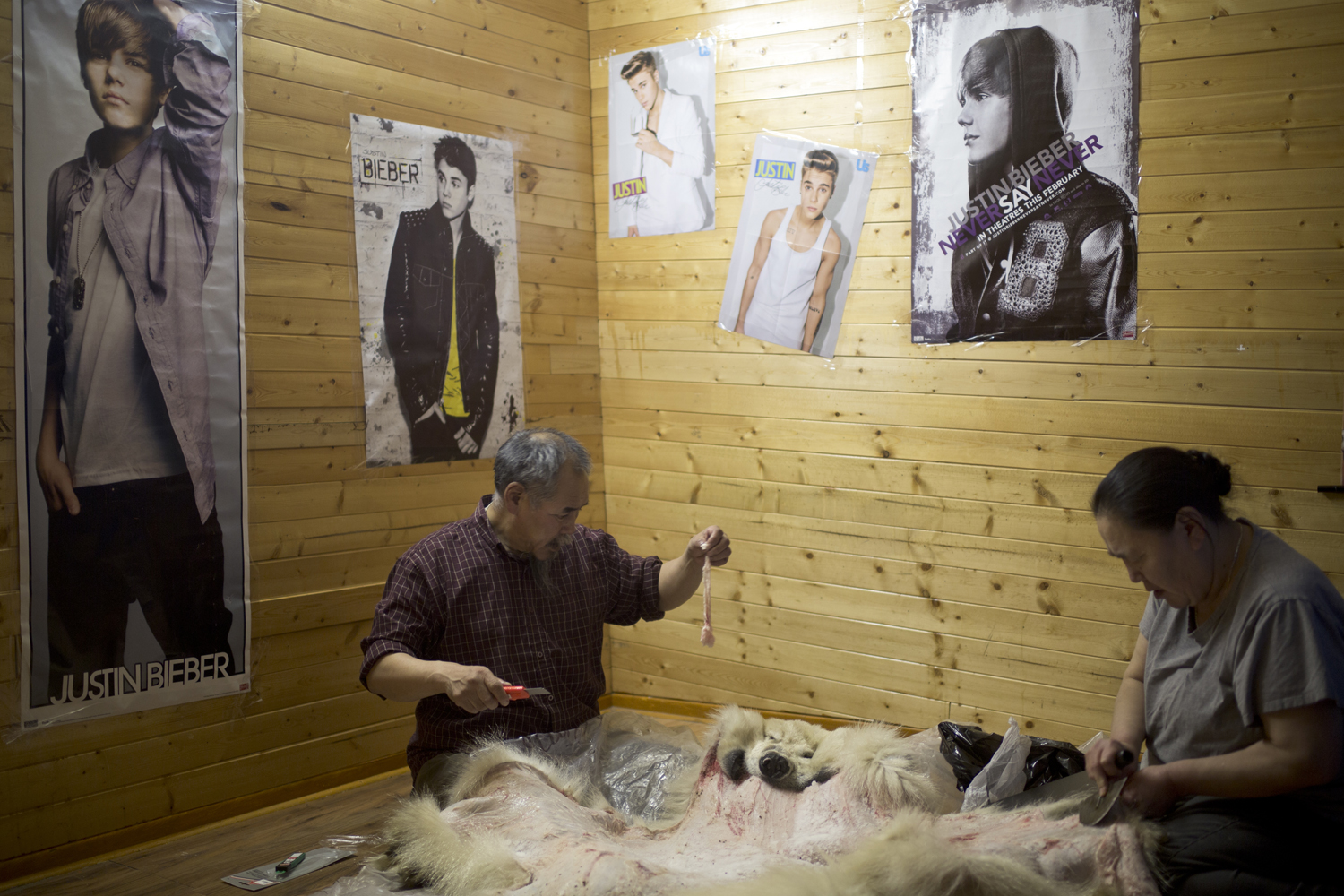 Arviat, Canada, Nov. 4, 2013. Inuit elders Mark and Angie Eetak cut off the fat from the pelt of a polar bear, which was shot days earlier. A single polar bear pelt can sell for over $10,000 – economic salvation for many impoverished Inuit families.