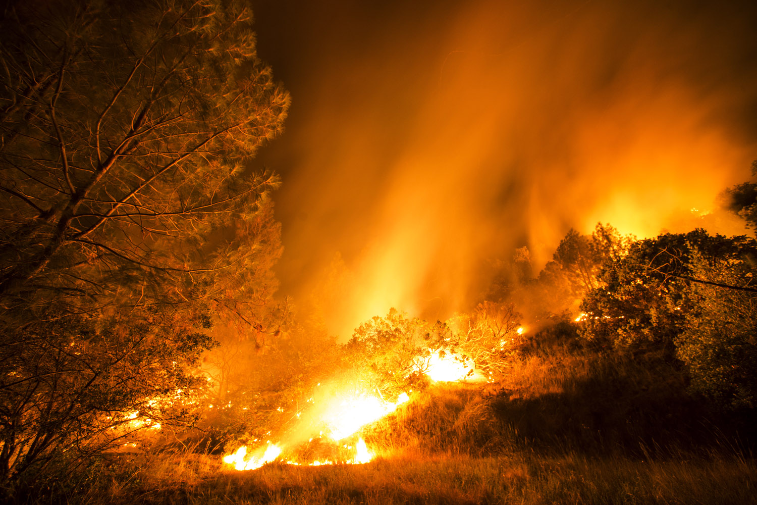 The Butts Fire burns near the town of Angwin in Napa County, Calif., July 1, 2014.