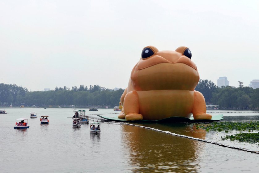 A giant inflatable toad is seen floating on a lake at the Yuyuantan Park in Beijing