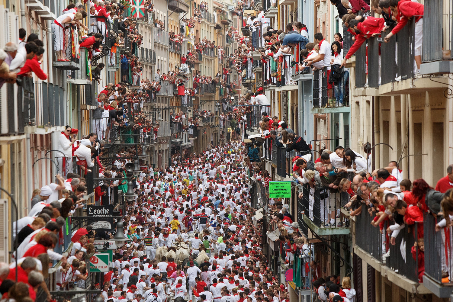 Revellers run with Torrestrella's fighting bulls along the Calle Estafeta during the second day of the San Fermin Running Of The Bulls festival in Pamplona, Spain on July 7, 2014.