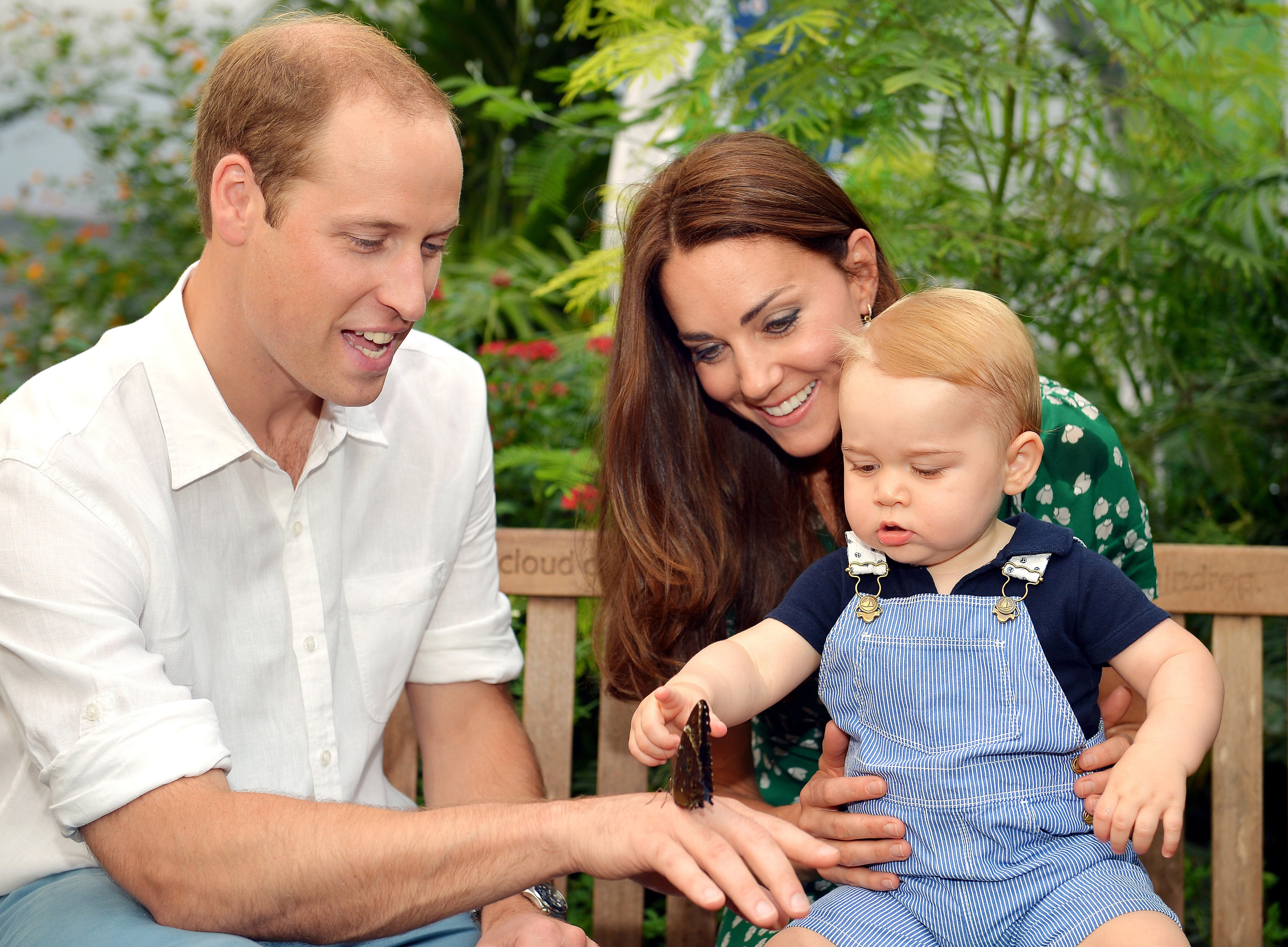 Catherine, Duchess of Cambridge holds Prince George as he points to a butterfly on Prince William, Duke of Cambridge's hand as they visit the Sensational Butterflies exhibition at the Natural History Museum on July 2, 2014 in London, England.