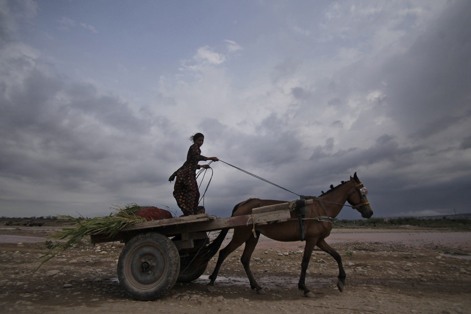 Jul. 17, 2014. An Indian girl rides a horse cart as monsoon clouds hover in Jammu, India