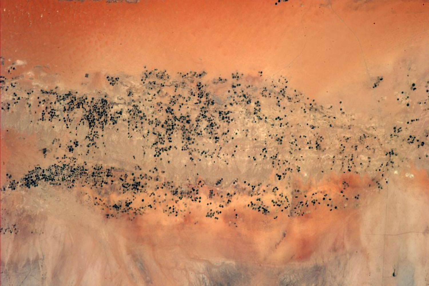 """Irrigation in the #Sahara #Desert looks like a challenging task from up here... #BlueDot""—Alexander Gerst via Twitter on July 28, 2014"