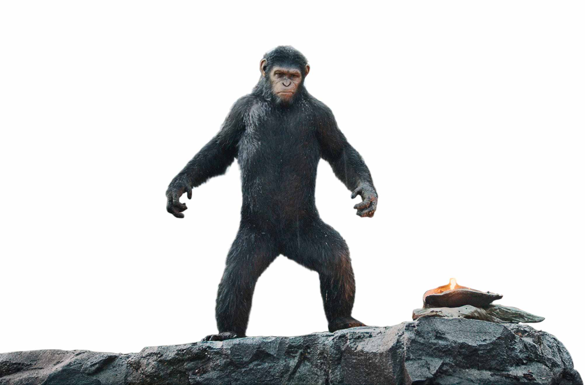 Dawn Of The Planet Of The Apes Movie Review Time