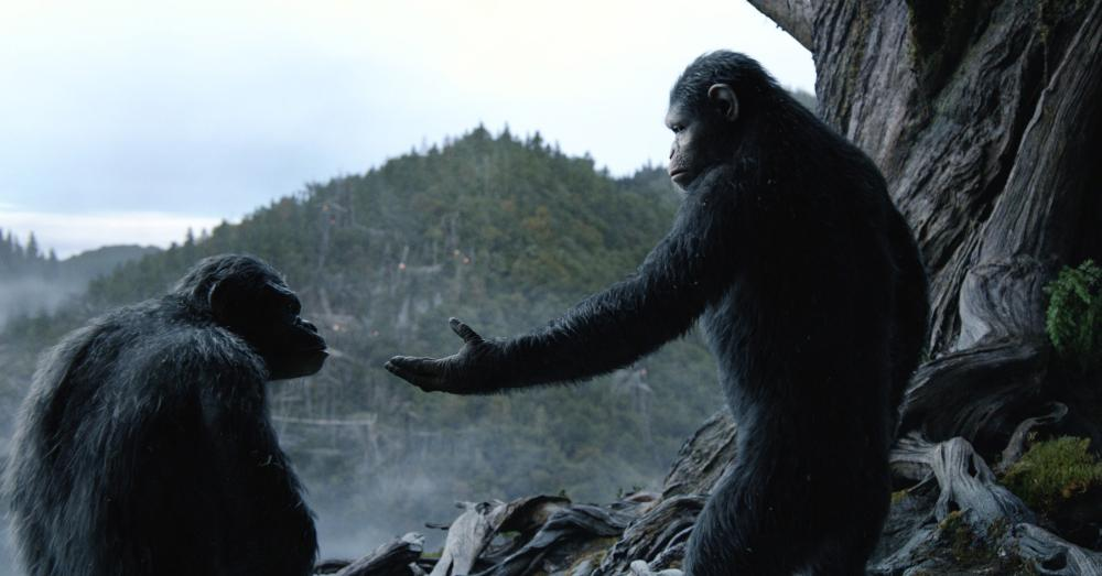 Dawn of the Planet of the Apes is the eighth film in the series.