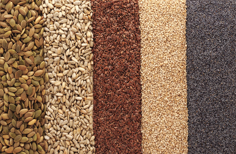 Edible Seeds Chia Hemp Flax Pumpkin Sesame Nigella Time