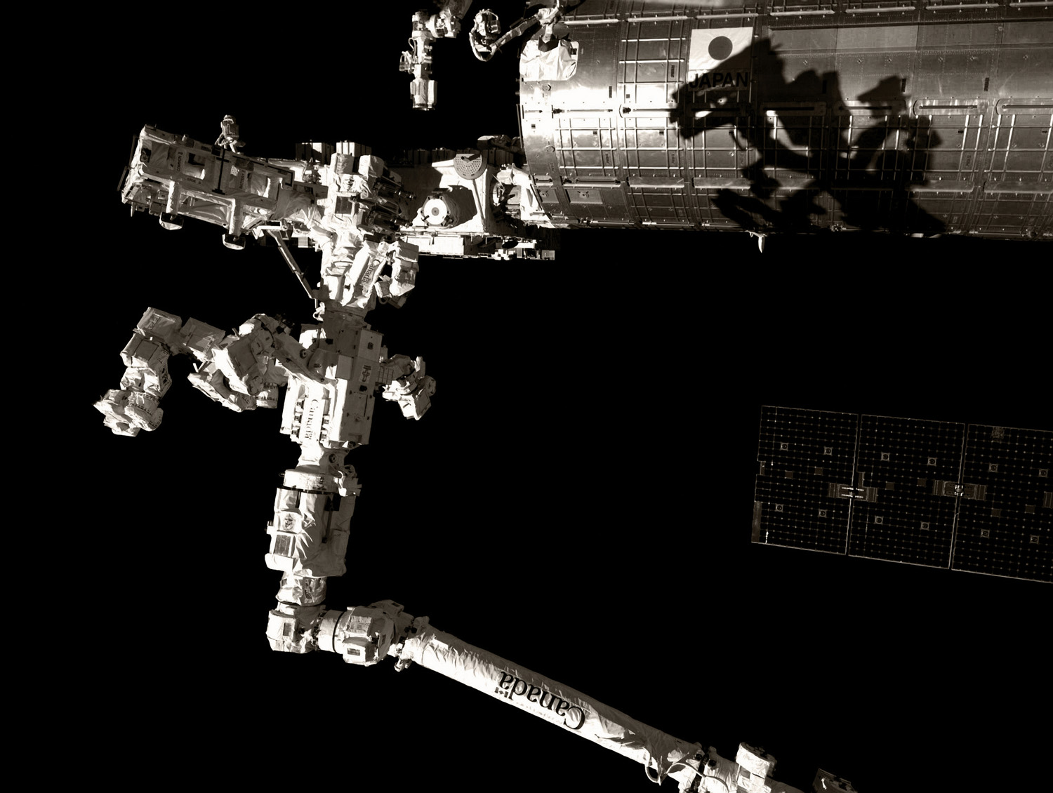 Godzilla in space: Canada arm with Dexter attachment and shadow on the Japanese module, rendered in B&W.