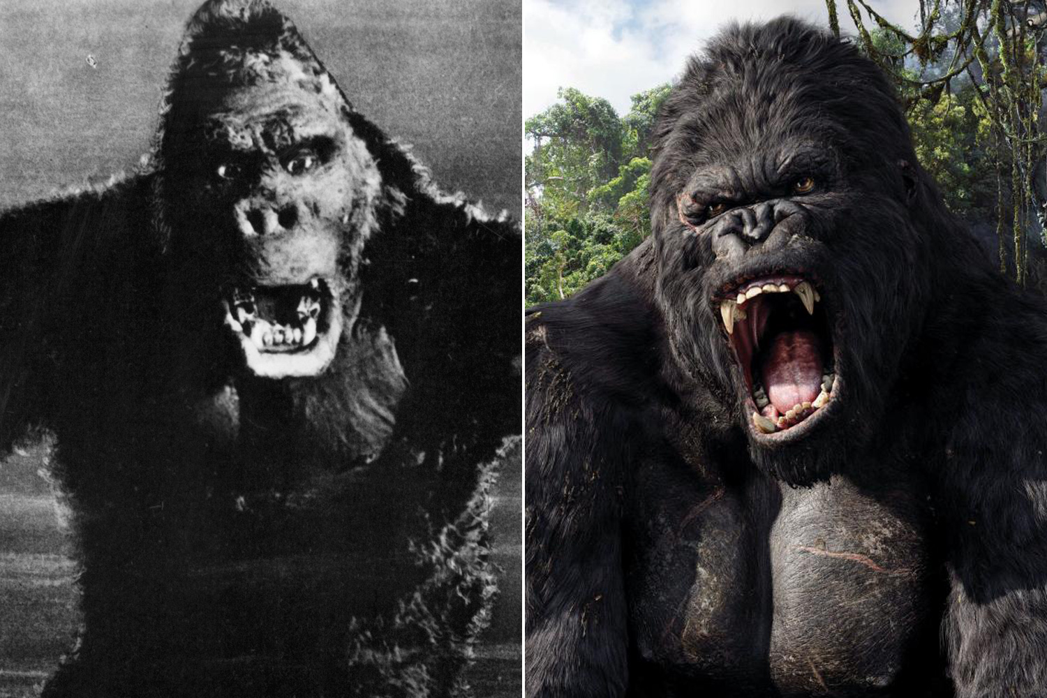 King Kong first terrorized damsels in distress in the eponymous 1933 film, which was noted for its use of stop-motion animation to render the giant gorilla. The franchise was rebooted in 2005 by Peter Jackson in another film by the same name.