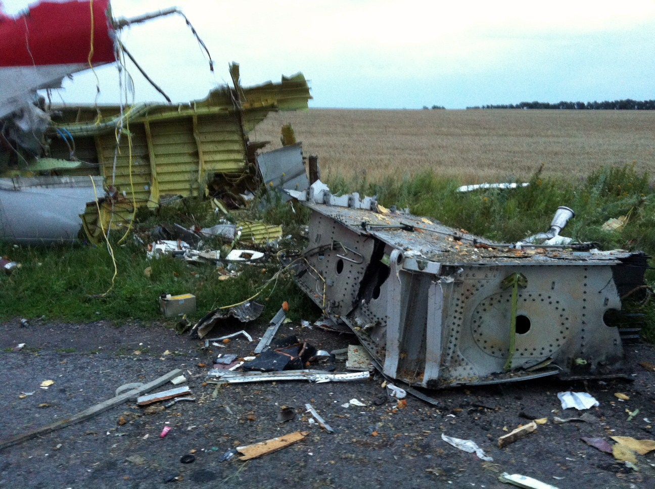 Wreckage of the malaysian airliner carrying 298 people from Amsterdam to Kuala Lumpur after it crashed, in rebel-held east Ukraine July 17, 2014.