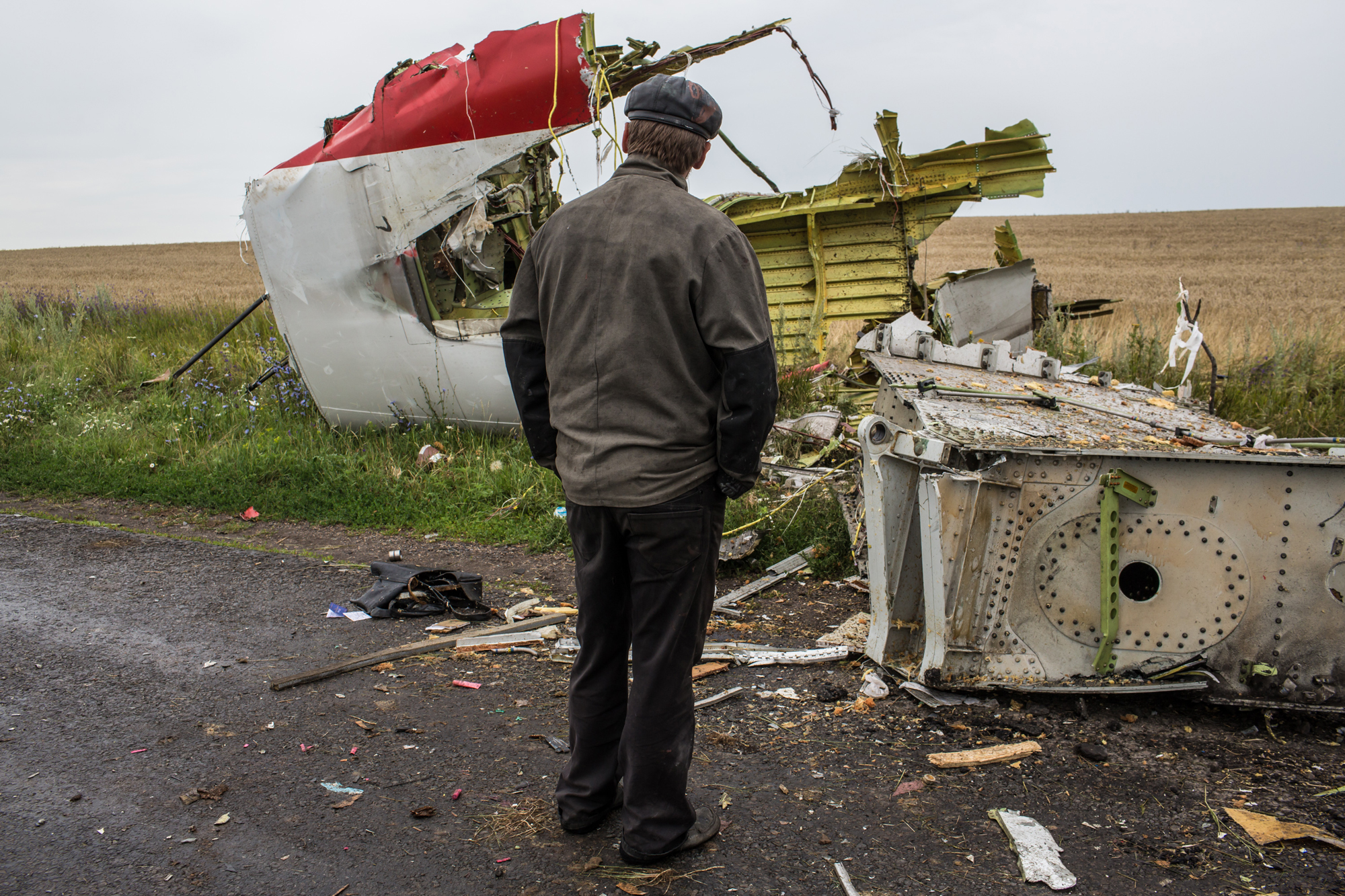 A man looks at the wreckage of passenger plane Malaysia Airlines flight MH17 on July 18, 2014 in Grabovka, Ukraine.