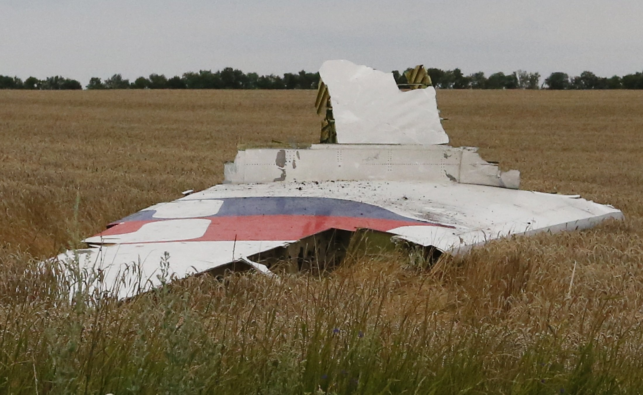 A part of the wreckage of a Malaysia Airlines Boeing 777 plane is seen after it crashed near the settlement of Grabovo in the Donetsk region, July 17, 2014.