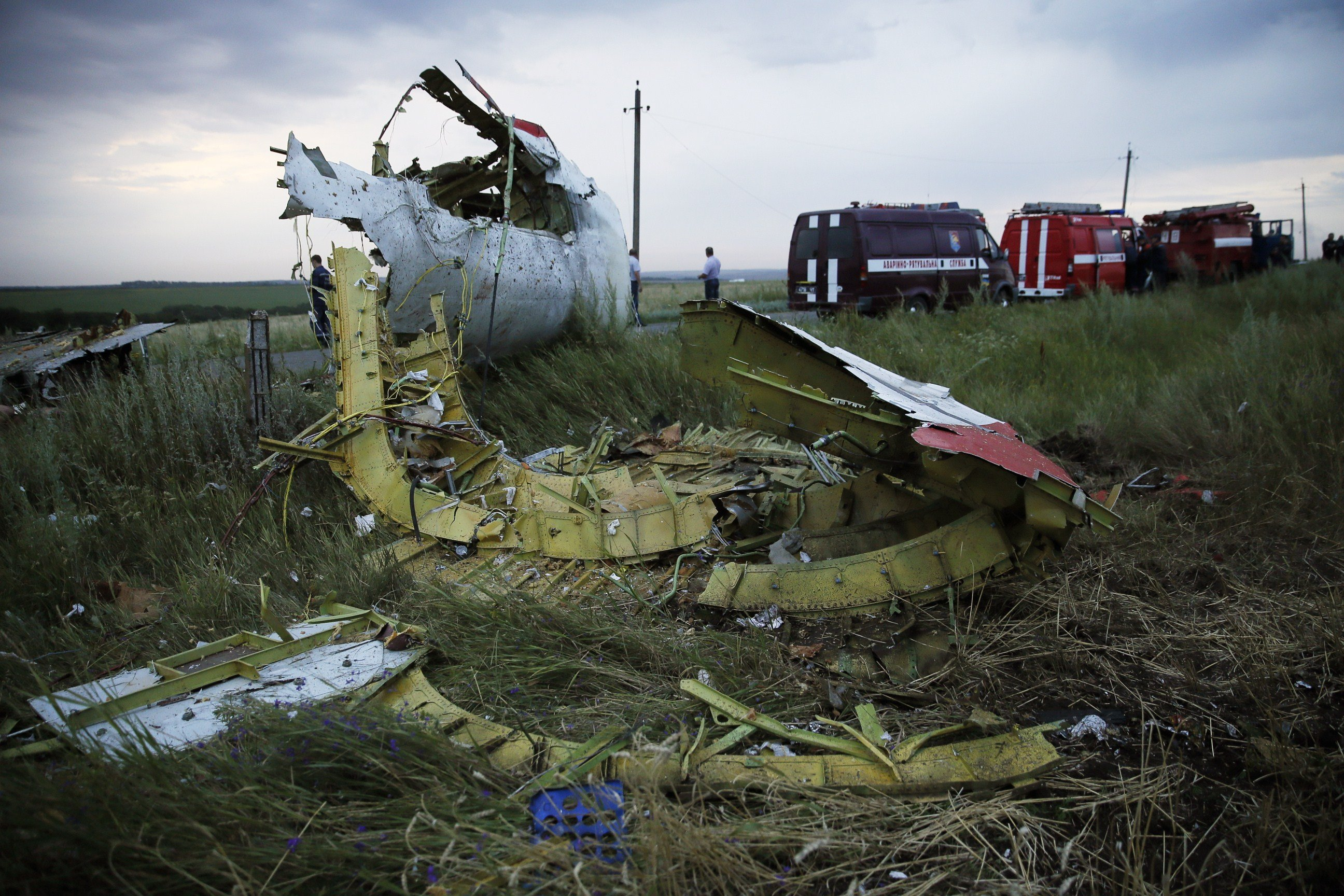 The wreckage of the Malaysian airliner carrying 295 people from Amsterdam to Kuala Lumpur after it crashed on July 17, 2014 near the town of Shaktarsk, in rebel-held east Ukraine.