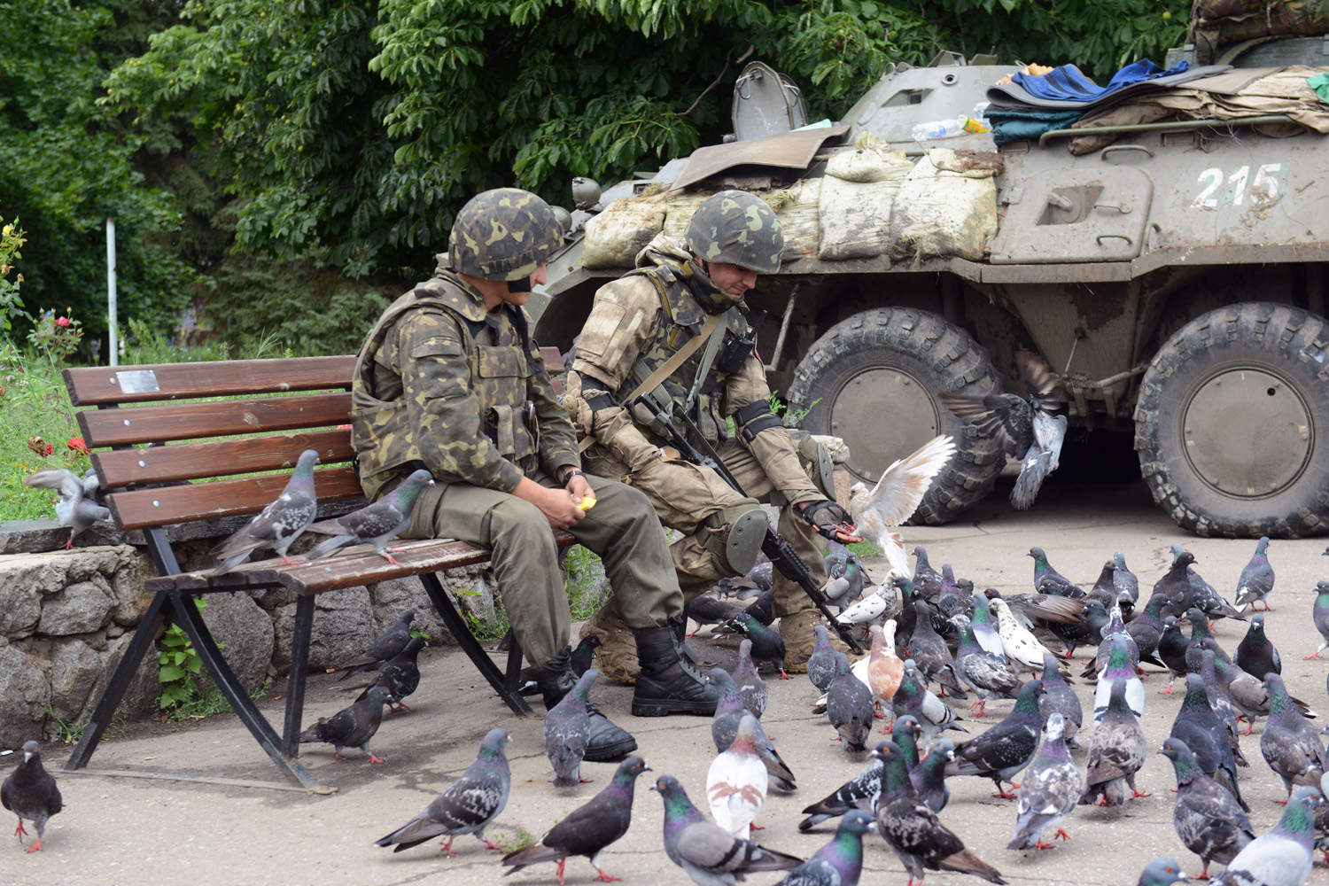 Ukrainian soldiers feed pigeons next to their APC, near the city hall in the eastern Ukrainian city of Slavyansk on July 8, 2014.