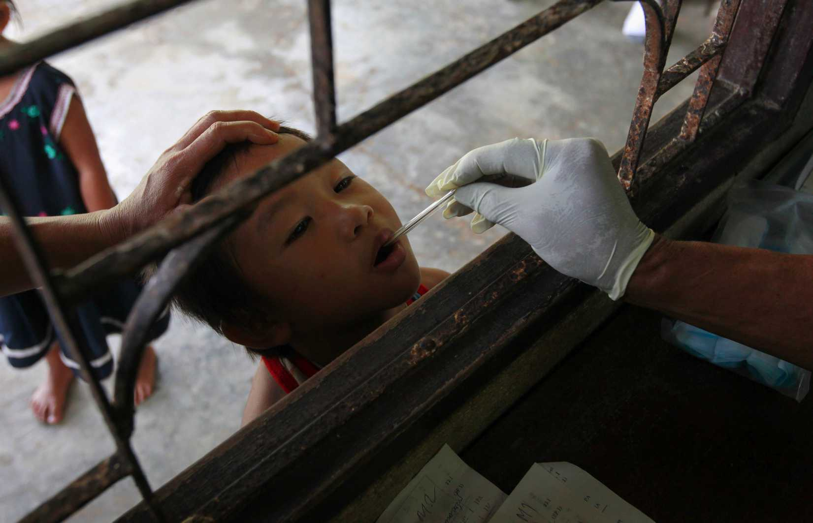 A Thai public-health official places a thermometer into a child's mouth at a malaria clinic in Sai Yoke district, Kanchanaburi province, Thailand, on Oct. 26, 2012