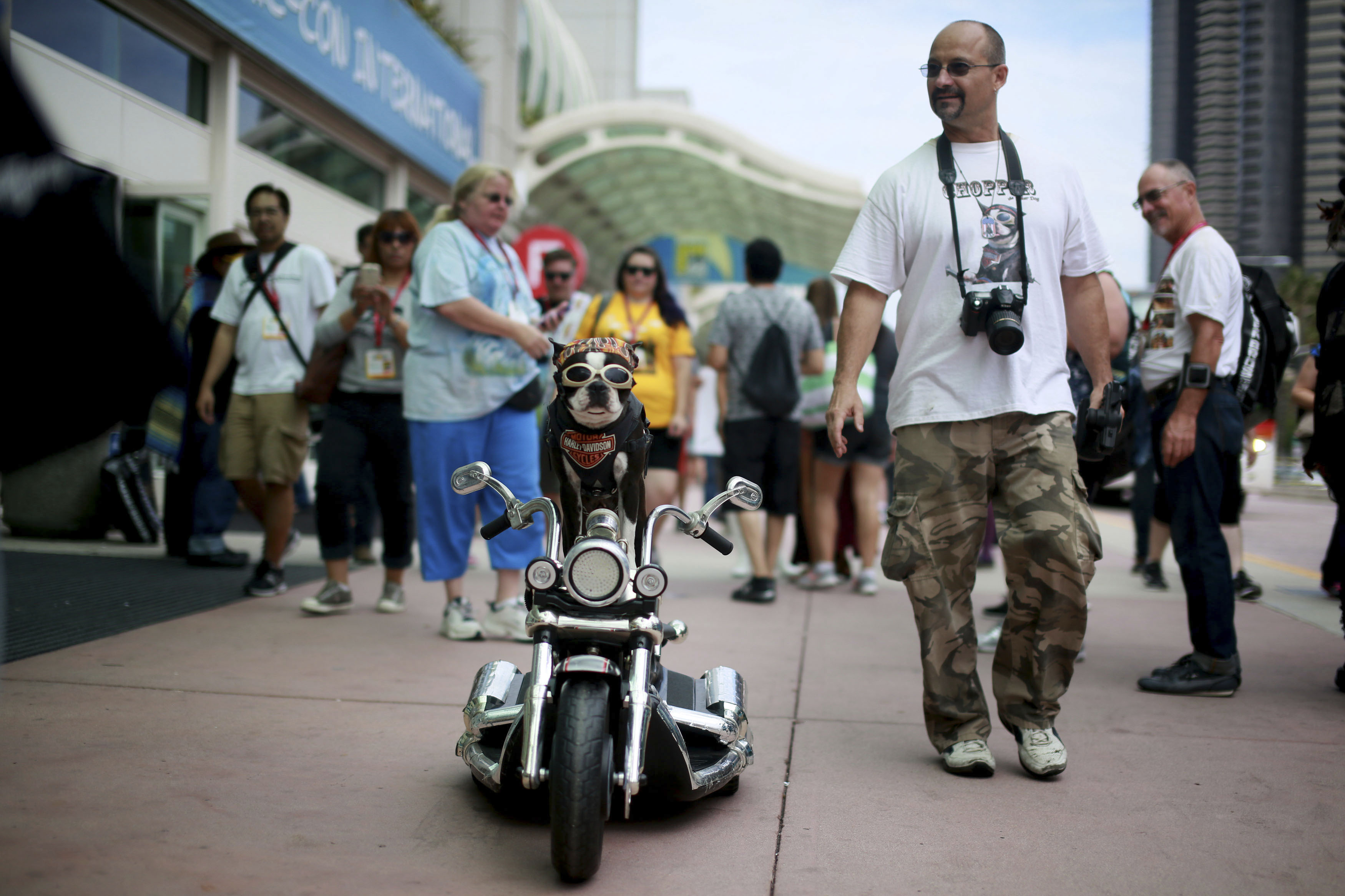 Mark Shaffer walks with Chopper The Biker Dog outside of the San Diego Convention Center during the 2014 Comic-Con International Convention in San Diego, California July 25, 2014.