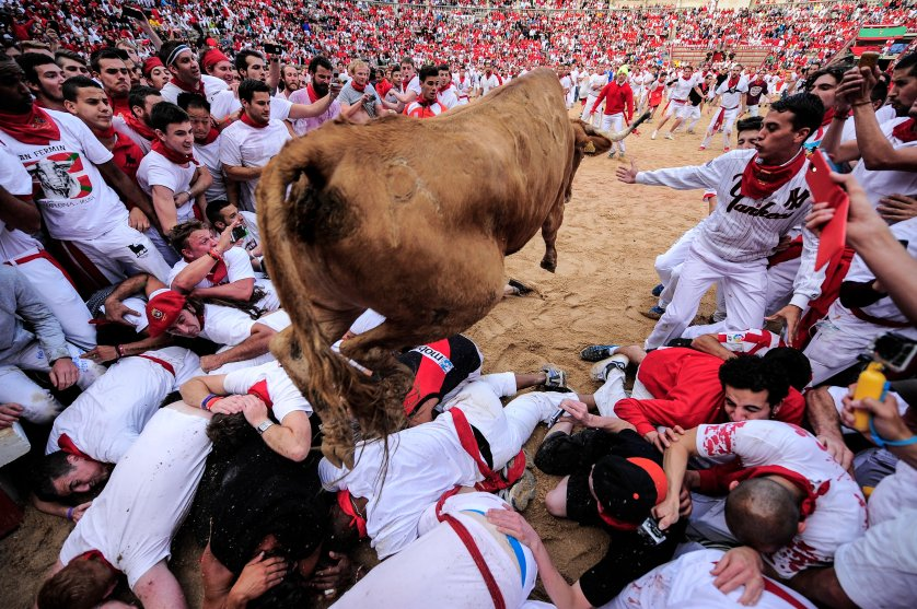 A cow jumps over revelers at the San Fermin festival, in Pamplona, Spain on July 8, 2014.