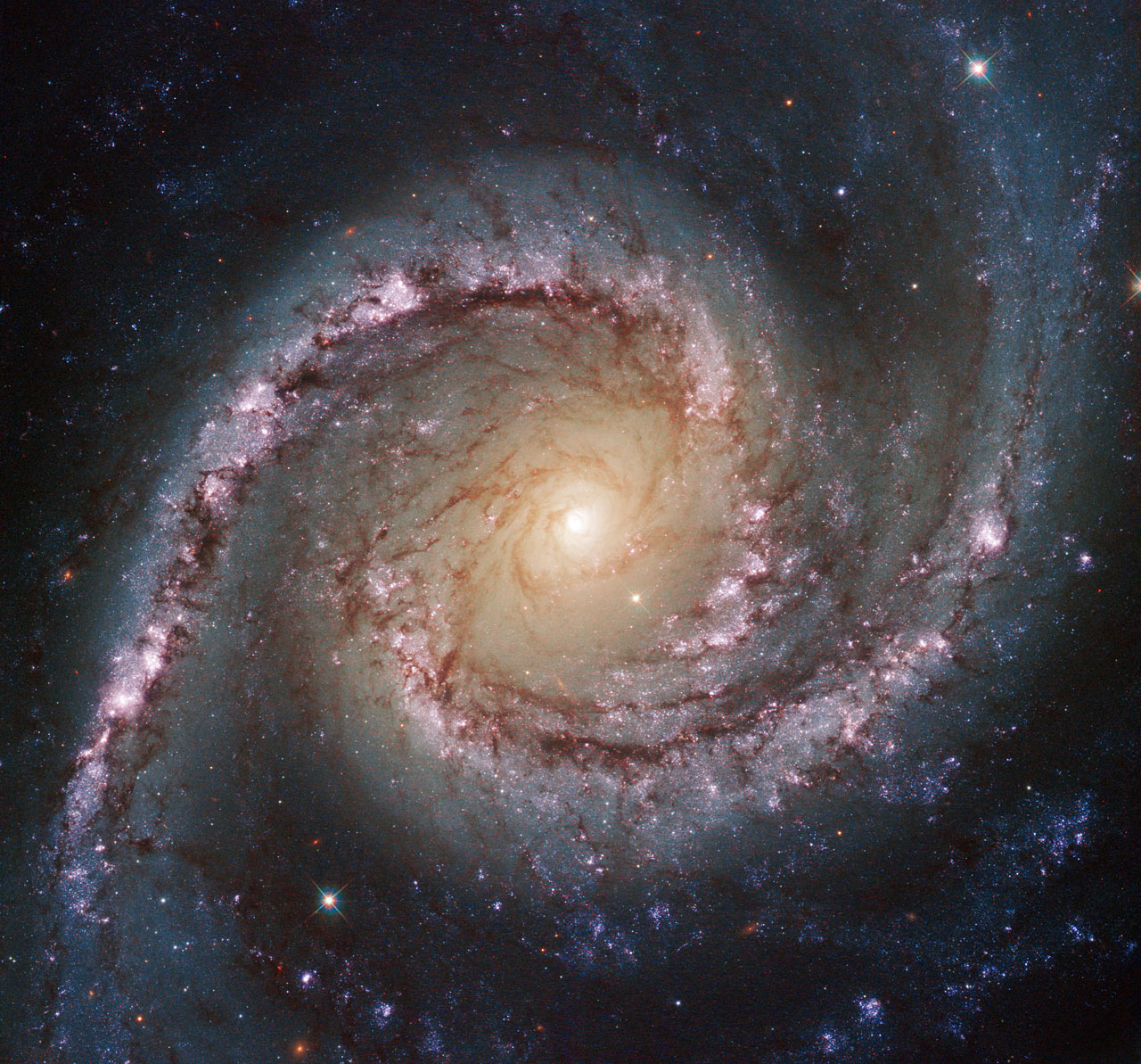 This new Hubble image shows NGC 1566, a galaxy located approximately 40 million light-years away in the constellation of Dorado. This image was taken by Hubble's Wide Field Camera 3 (WFC3) in the near-infrared part of the spectrum.
