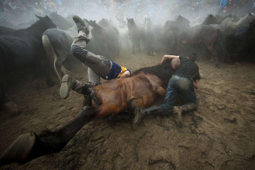TOPSHOTS-SPAIN-FESTIVAL-HORSES-SHEARING-BEASTS