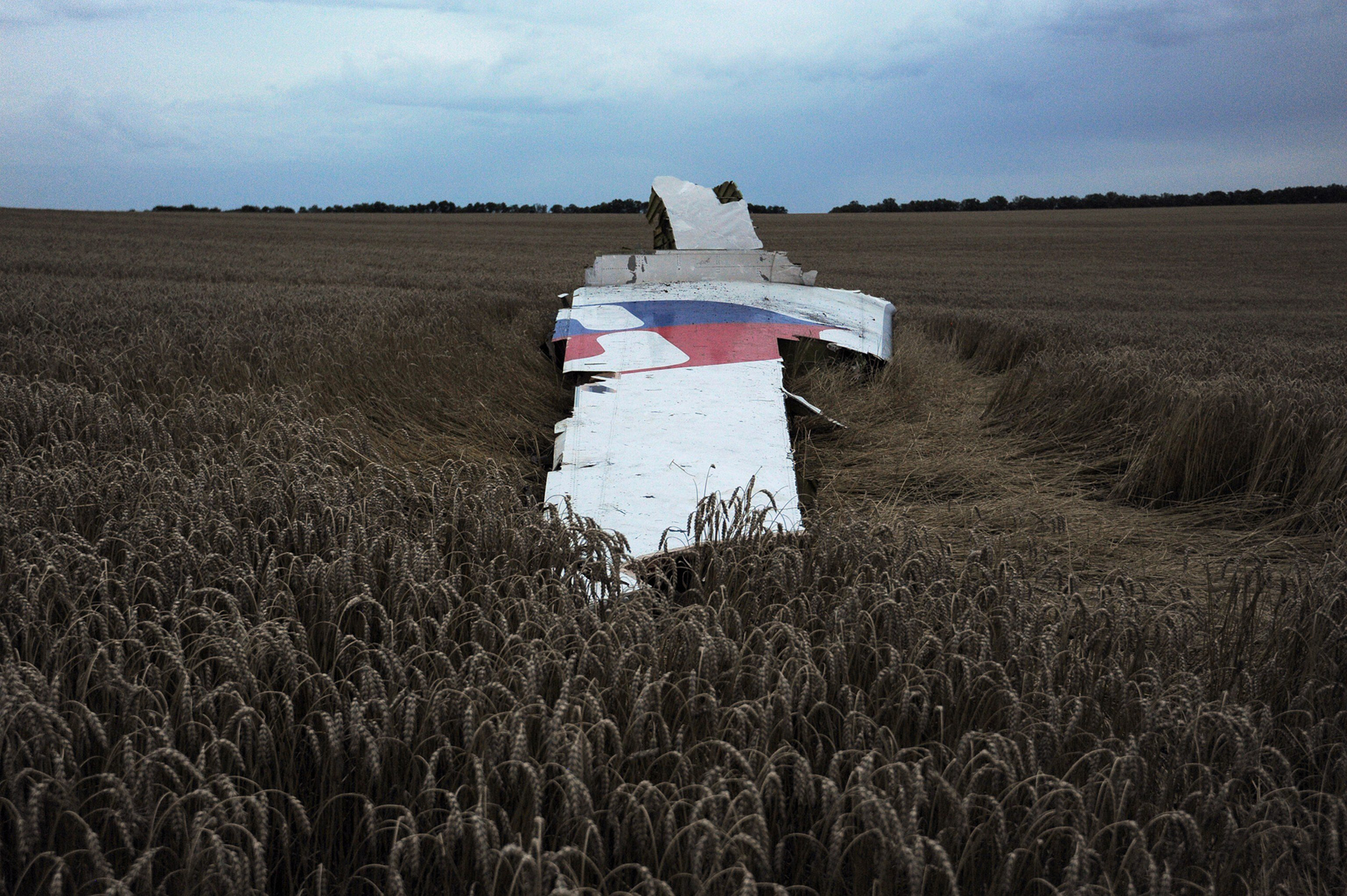 The wreckage of the Malaysian airliner carrying 295 people from Amsterdam to Kuala Lumpur after it crashed, near the town of Shaktarsk, in rebel-held east Ukraine, July 17, 2014.