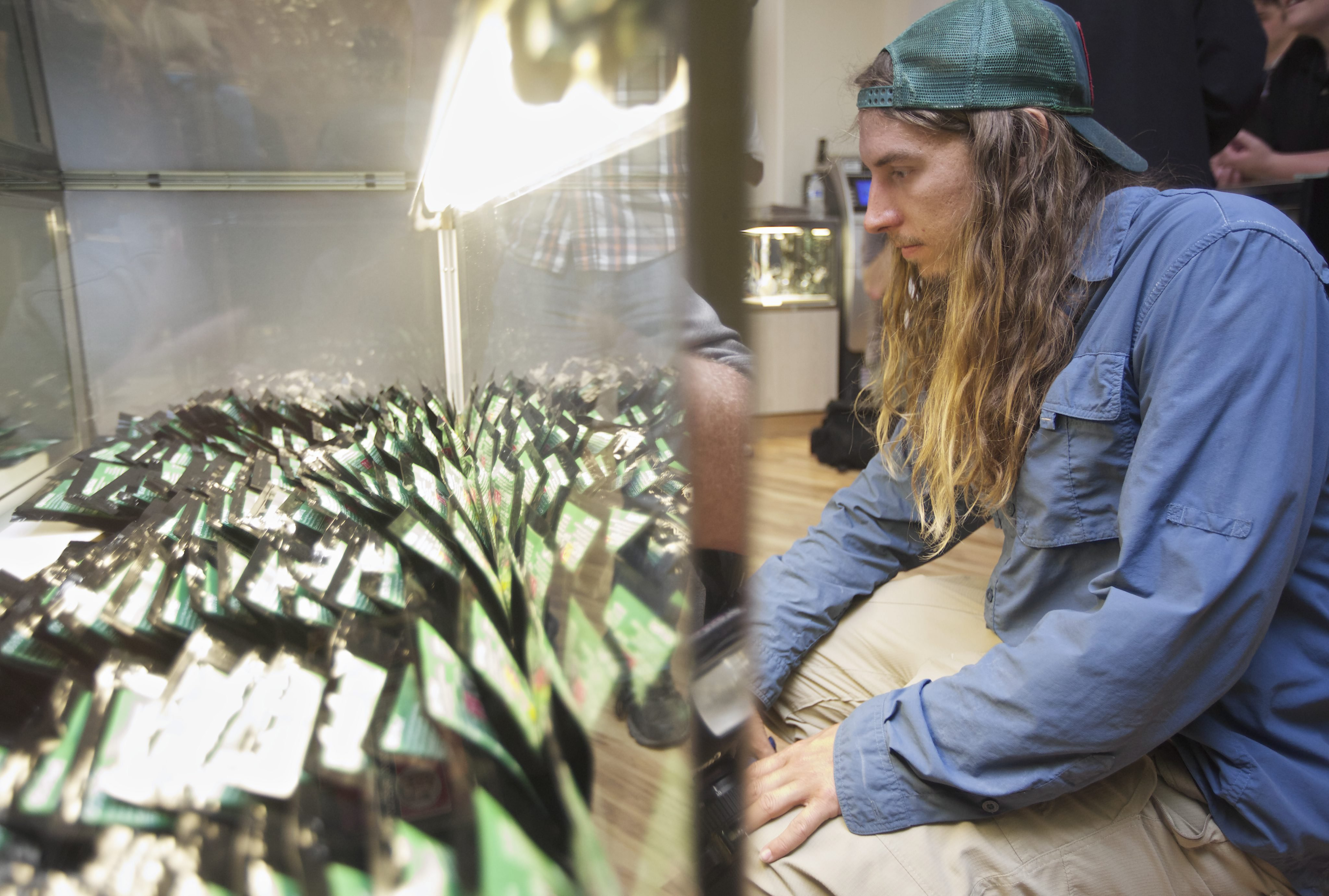 Ryan Hutchen of Columbia, S.C., looks at different cannabis strains at recreational marijuana store Cannabis City in Seattle on July 8, 2014.