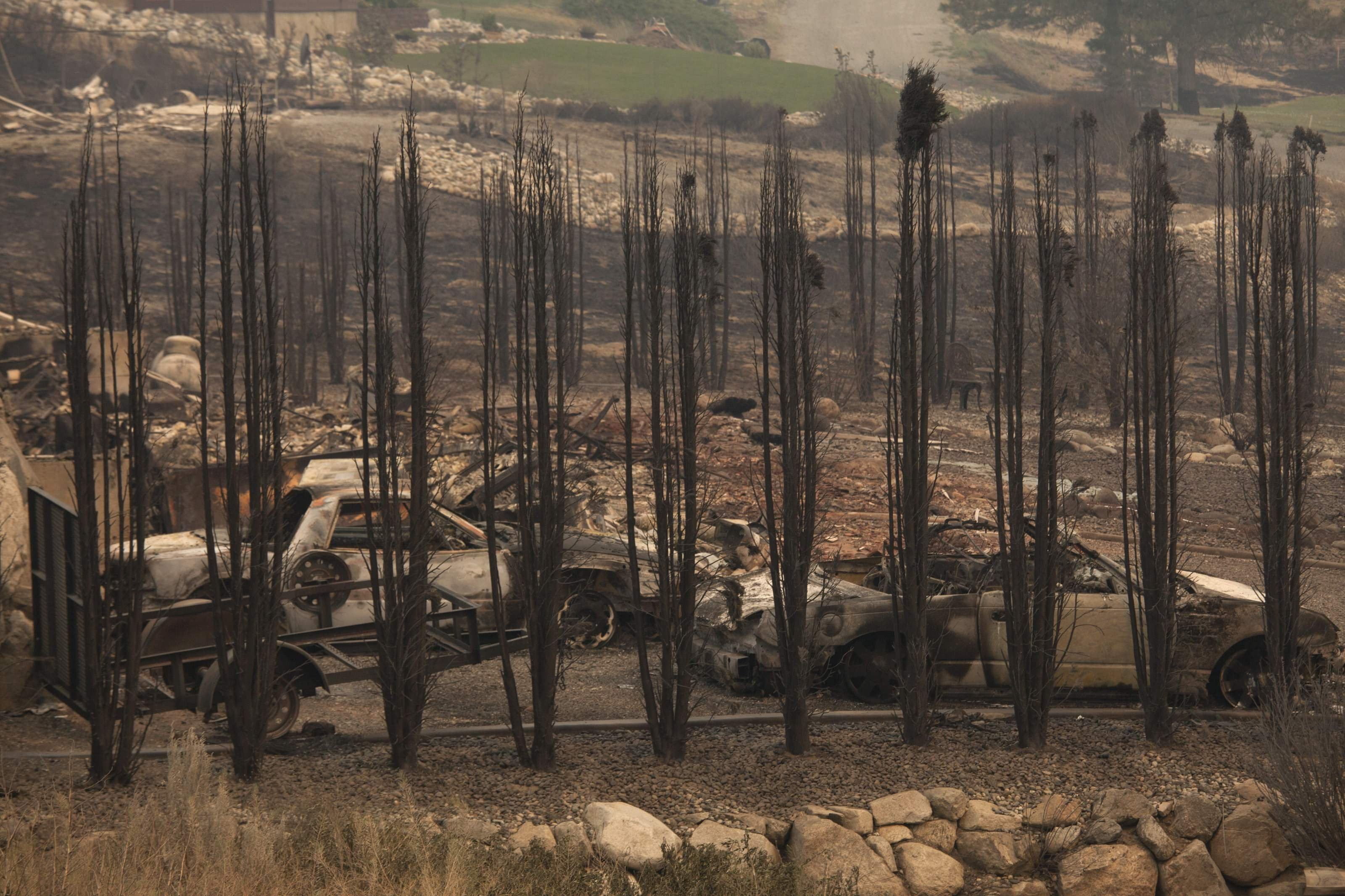 Burnt trees and cars are pictured near Alta Lake Golf Course after much of the area was consumed by the Carlton Complex Fire near Pateros, Washington on July 19, 2014.