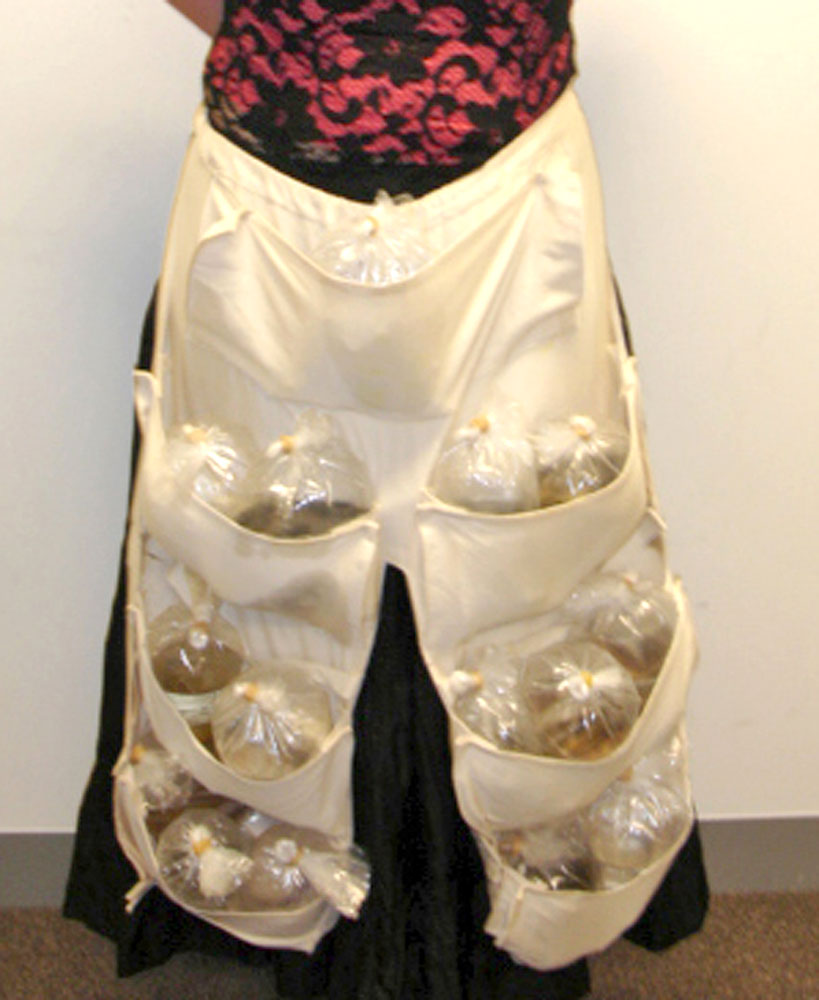 A woman arrived in Melbourne, Australia on a flight from Singapore with 51 live tropical fish hidden in a specially designed apron under her skirt on June 6, 2005. Customs officers became suspicious after hearing 'flipping' noises coming from her waist.
