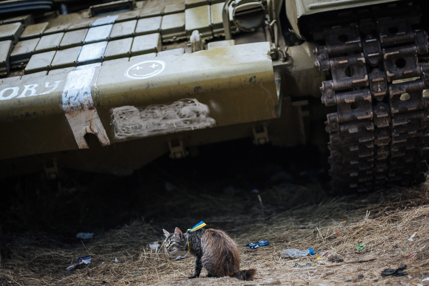 Aug. 22, 2014. A cat wearing a ribbon with the Ukrainian national flag sits near a tank at a Ukrainian checkpoint in the town of Avdeevka, near Donetsk, Ukraine.