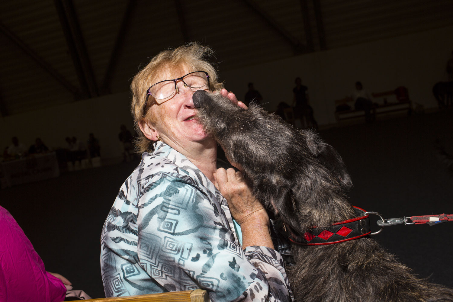 Tove Johnsen, a former breeder of Scottish Deerhounds, meets Minka, a one year old female Scottish Deerhound from Finland at the 2014 World Dog Show on Saturday, August 9th, 2014, in Helsinki, Finland.