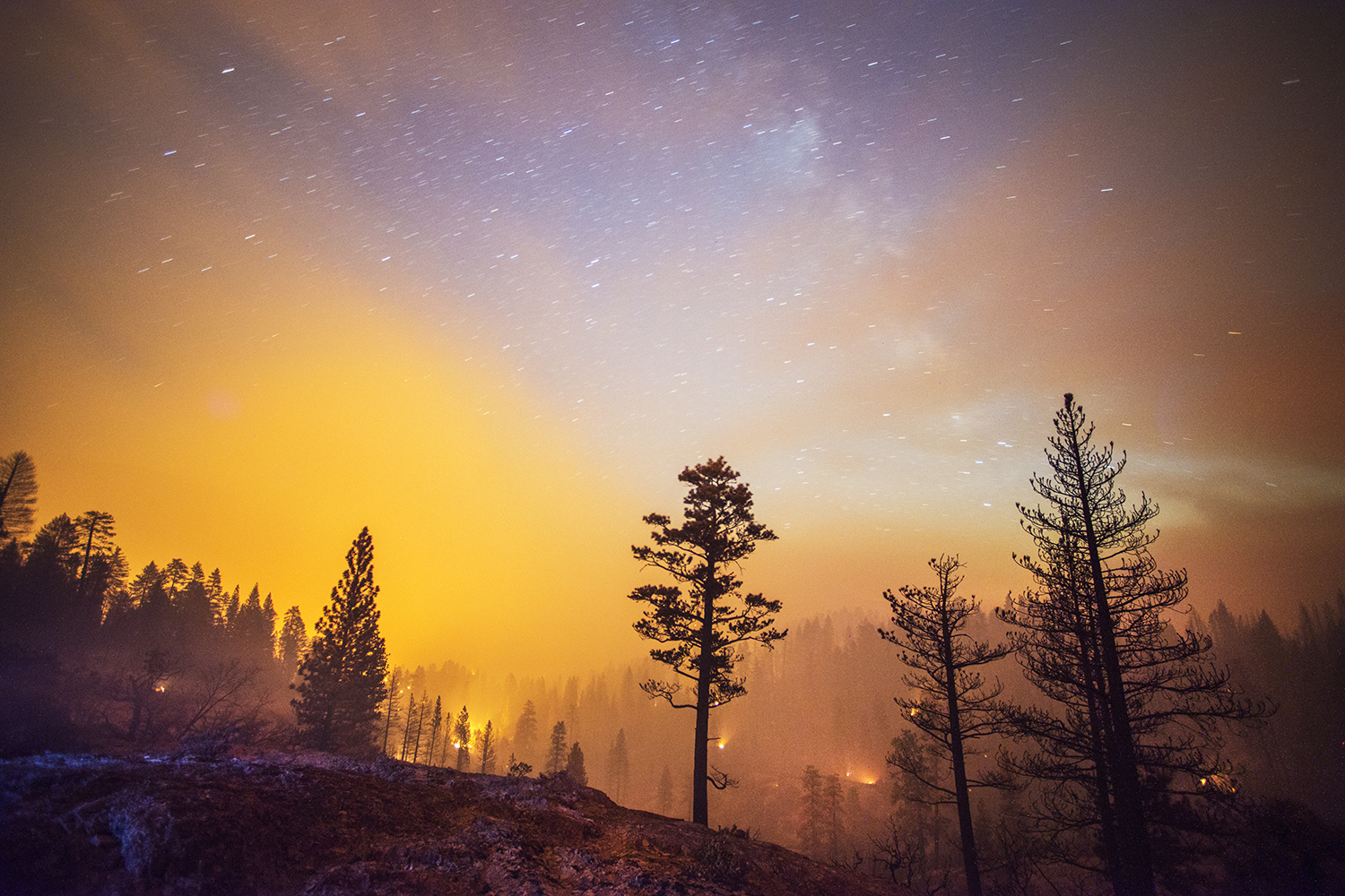 The French Fire, one of six major fires burning in California, burns in the Sierra National Forest near Mammoth Pool, Calif., August 1, 2014.