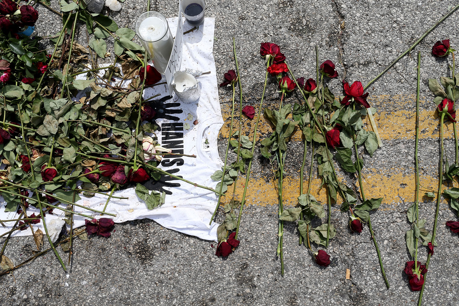 Roses are seen in a memorial setup for Michael Brown on the spot where his body lay after he was shot by police, Aug. 22, 2014 in Ferguson, Missouri.
