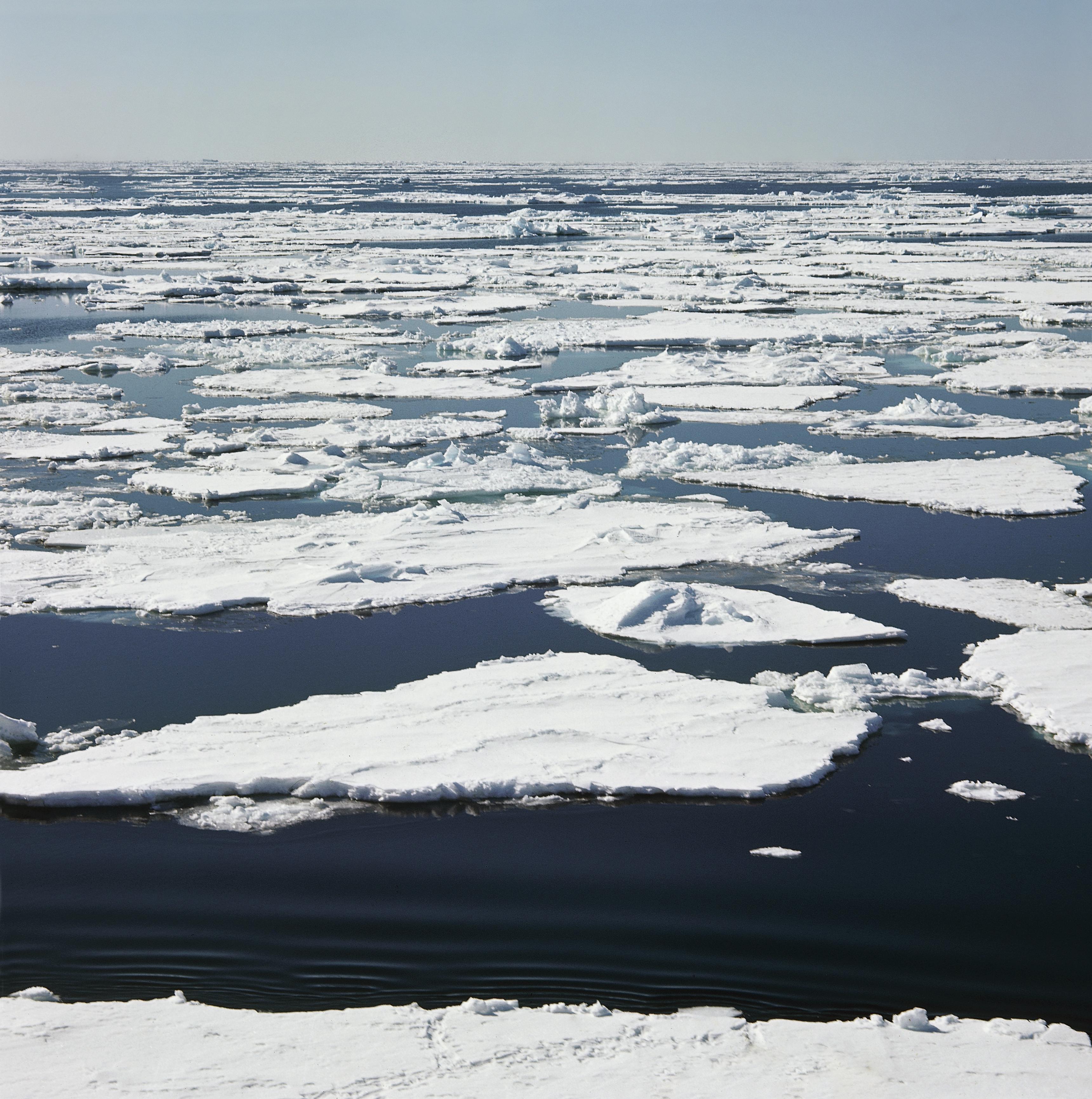 Ice floating in Ross Sea, Antarctica on June 15, 2014.