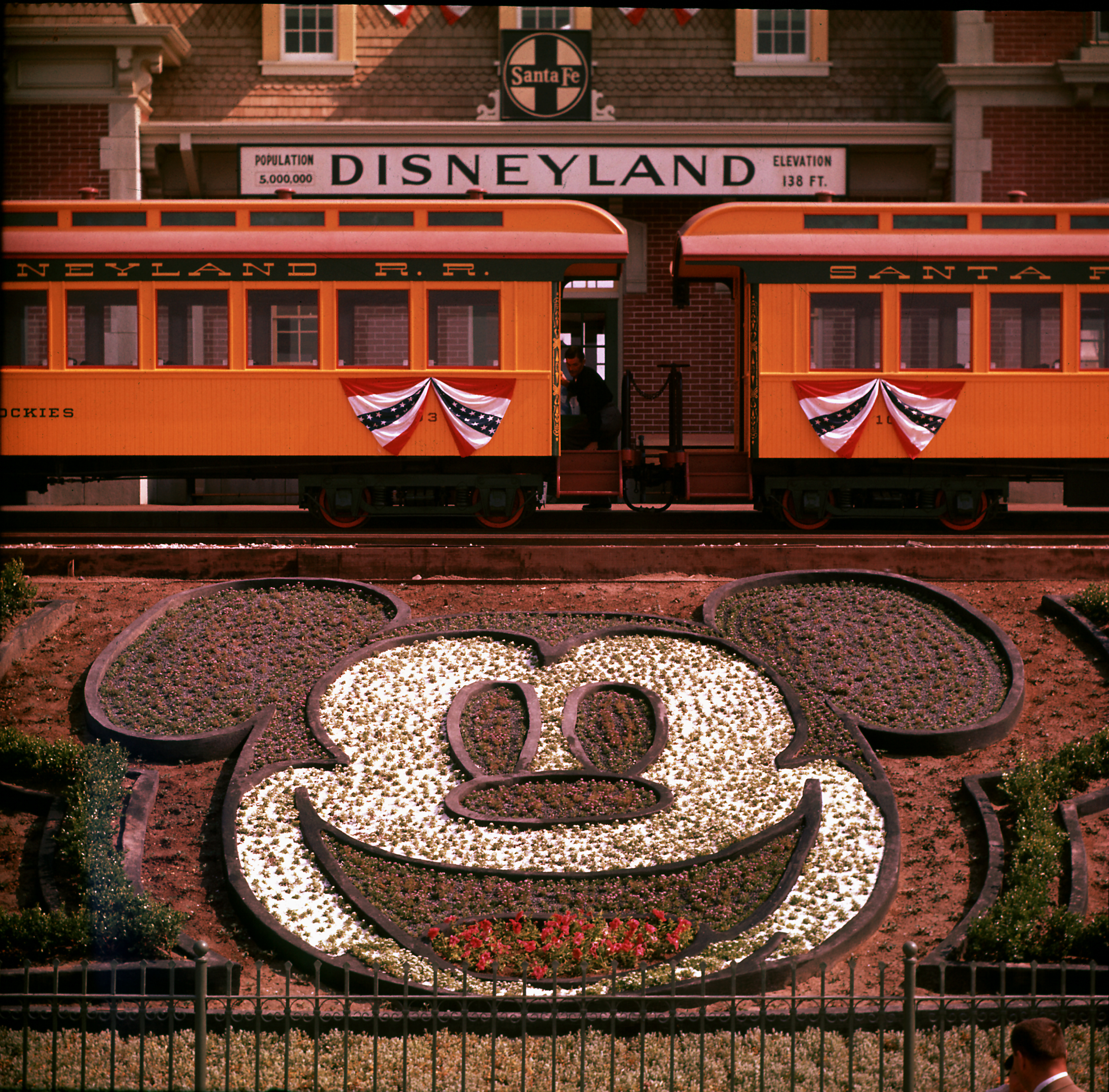 Planted flowers forming design of Mickey Mouse's face, with Disneyland train in background.  (Photo by Loomis Dean/The LIFE Picture Collection/Getty Images)