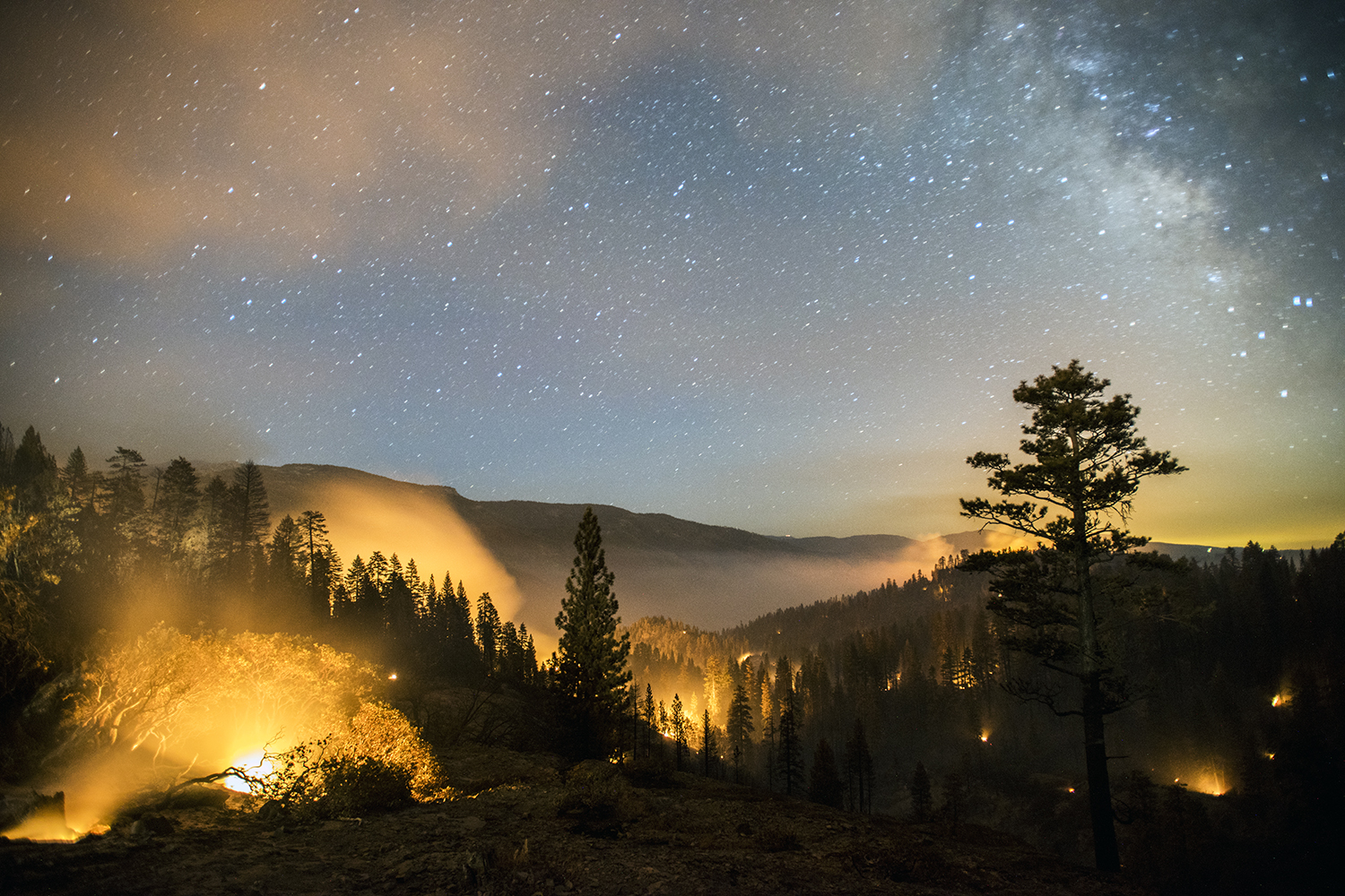 The French Fire burns overnight in the Sierra National Forest near Mammoth Pool, Calif., August 1, 2014.