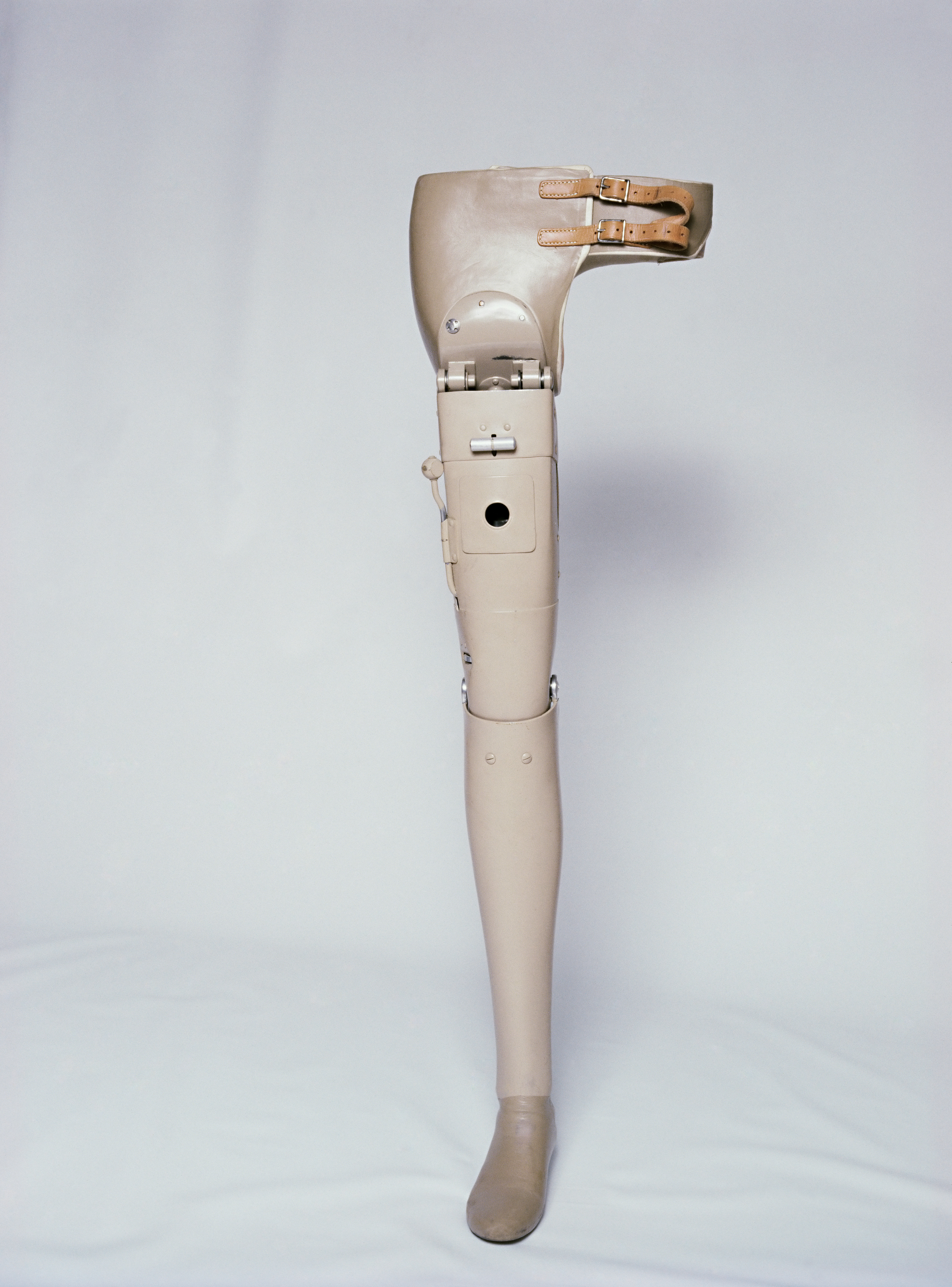 Hip and leg prosthesis