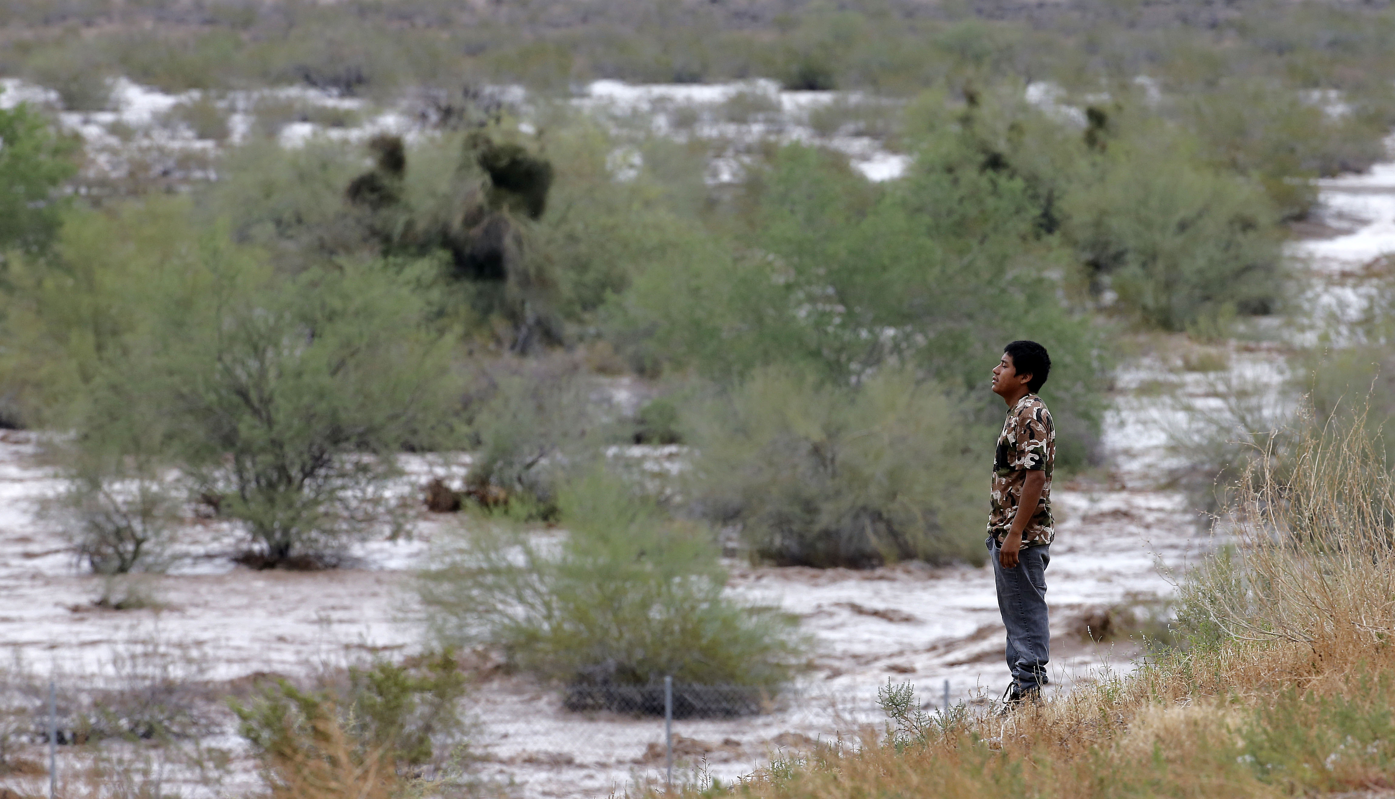 Ramiro Pantaleon watches waters from Skunk Creek through the Sonoran Desert, Aug. 19, 2014, in northwestern Phoenix.