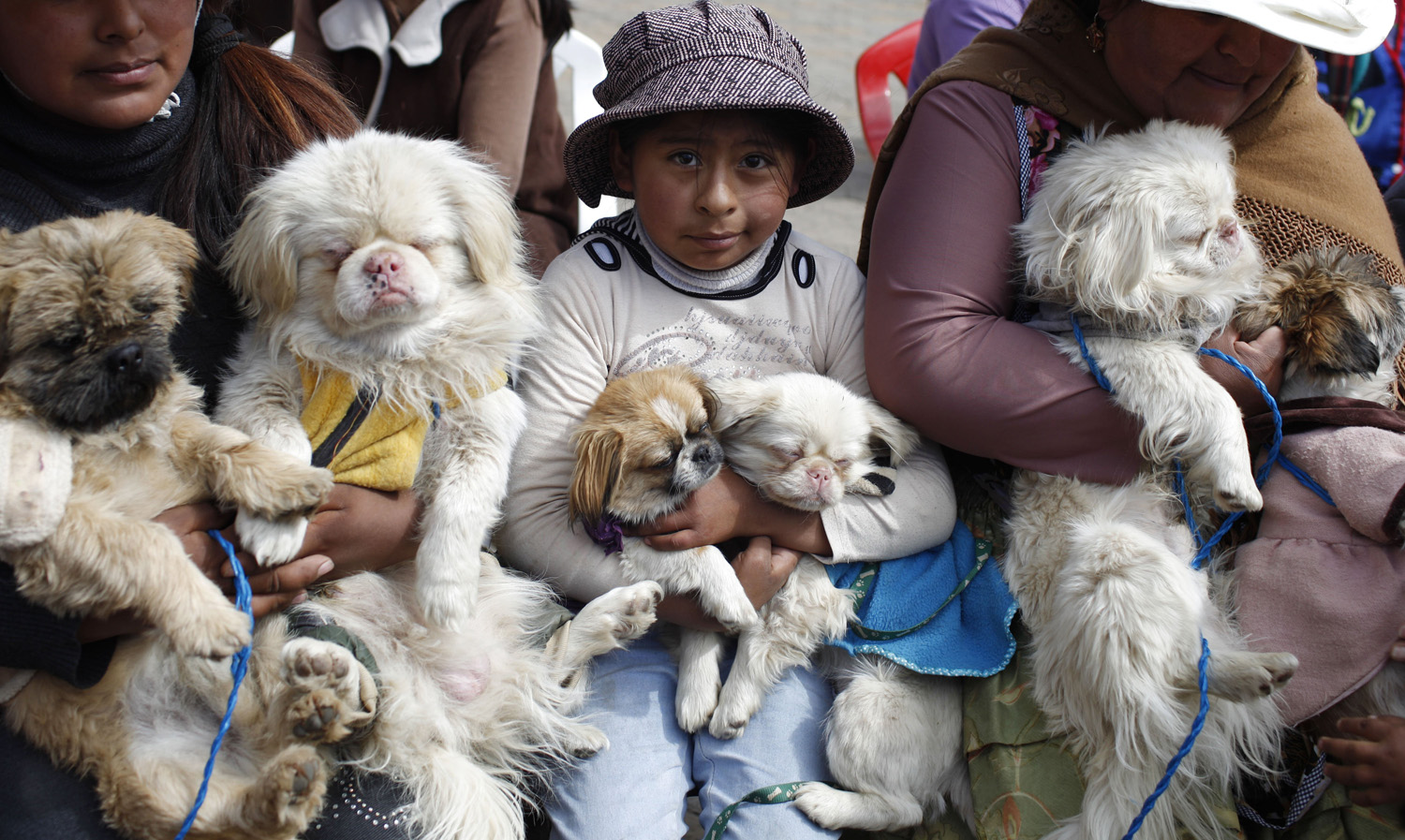 People and their dogs attend Mass during Dog Day, in El Alto, Bolivia on Aug. 16, 2014.