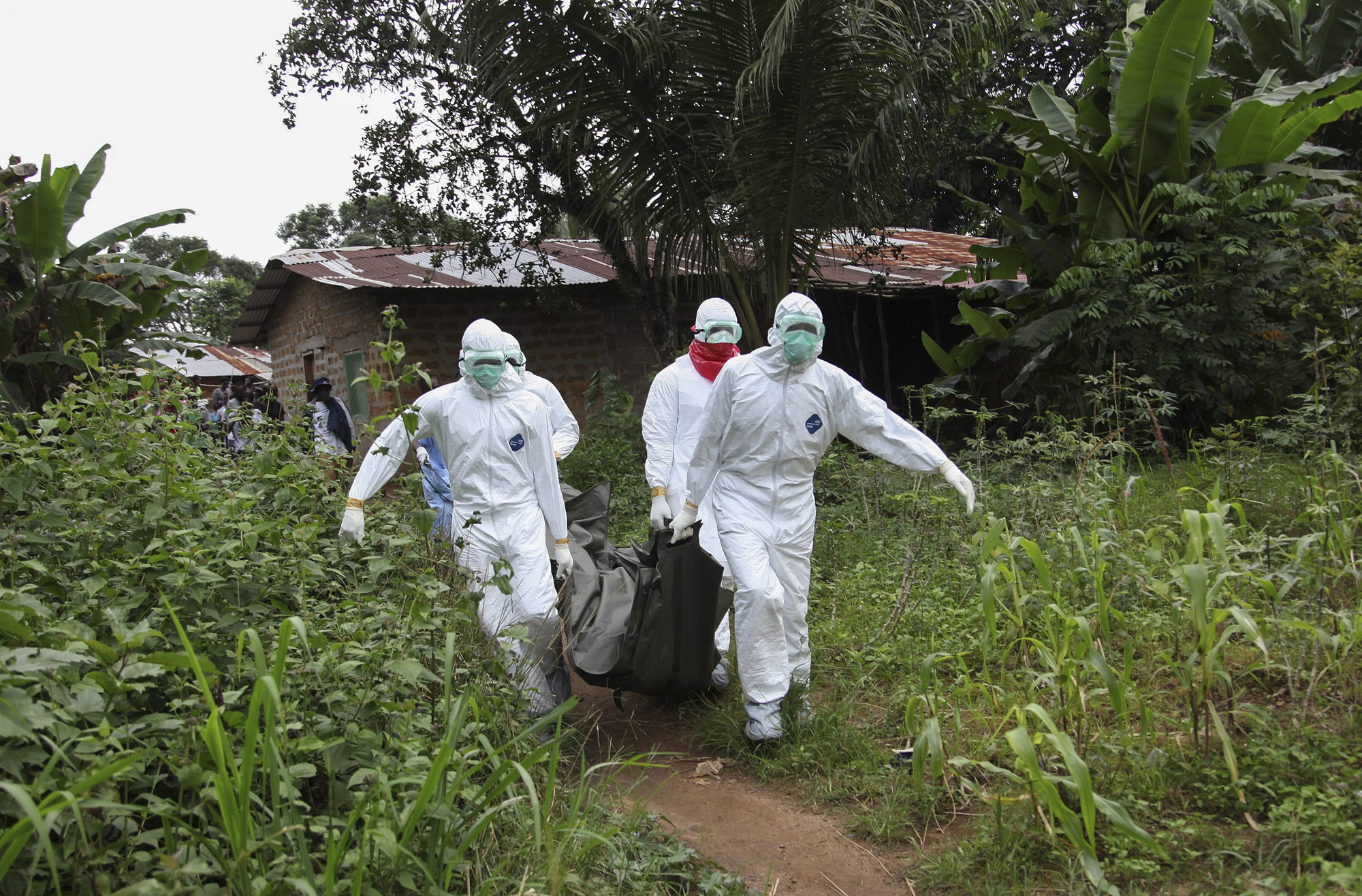 Liberian nurses carry the body of an Ebola victim on the way to bury them in the Banjor Community on the outskirts of Monrovia, Liberia, Aug. 6, 2014.