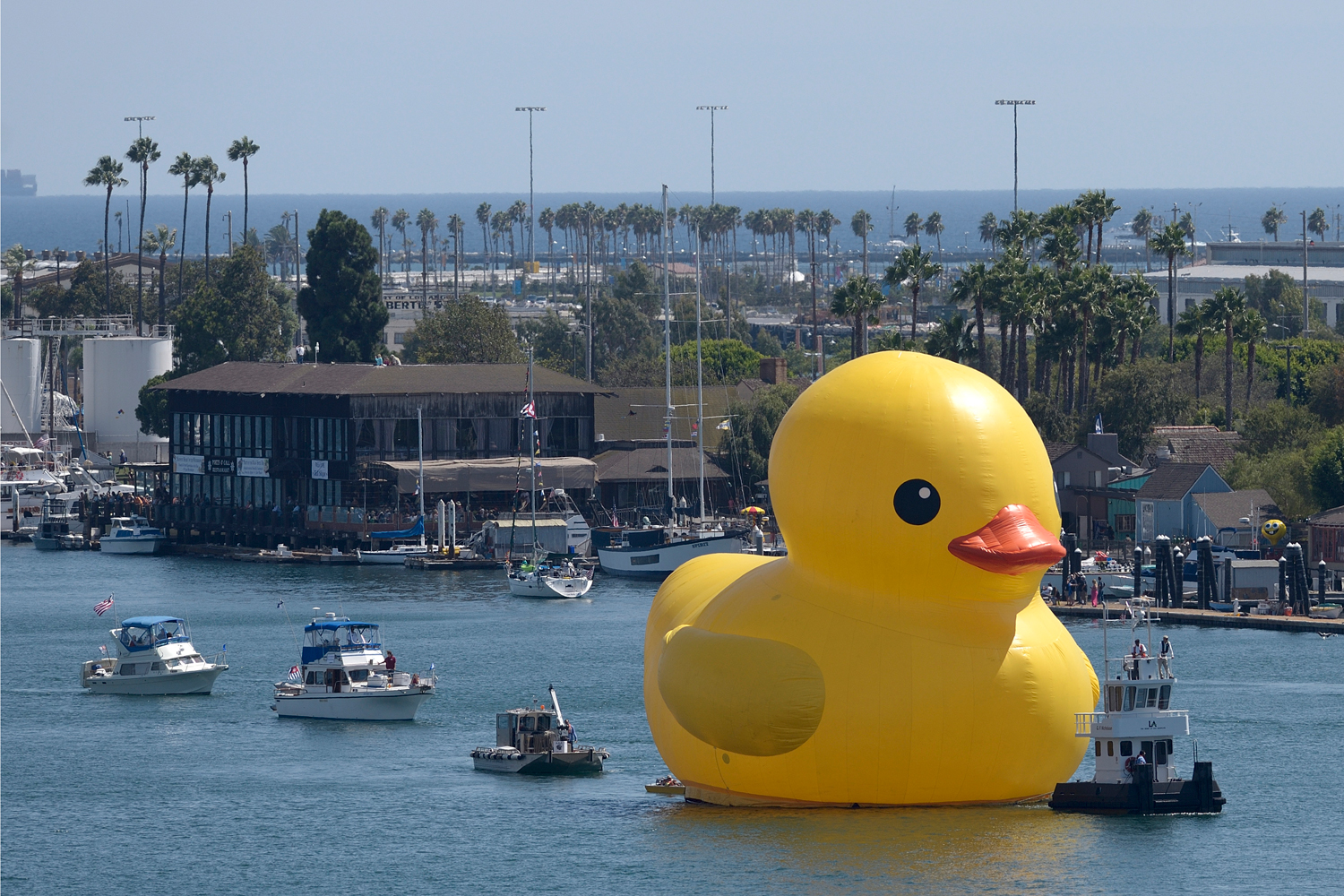 A giant yellow vinyl duck joins sailing ships and motorboats during the Tall Ships Festival L.A. parade in the Port of Los Angeles on Wednesday, Aug. 20, 2014.