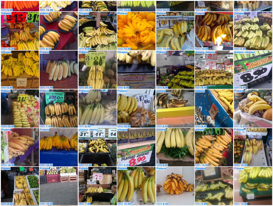Fruit and vegetables are common items photographed with the Premise app to help measure inflation