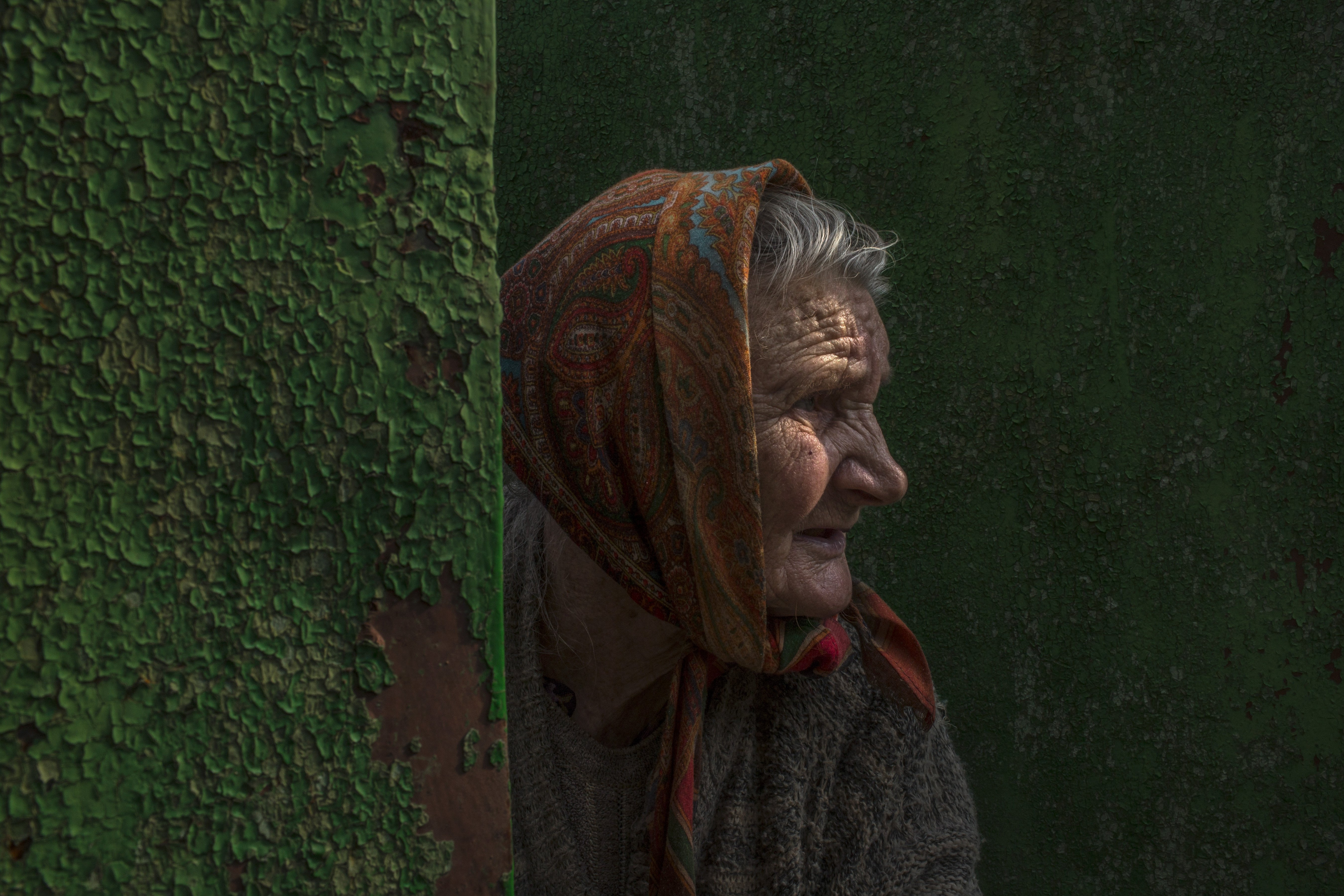 Aug. 1, 2014. After collecting a few apples from a nearby tree, Nadezda Ivanovna peers through the gate of her home on the outskirts of Slovyansk, Ukraine.